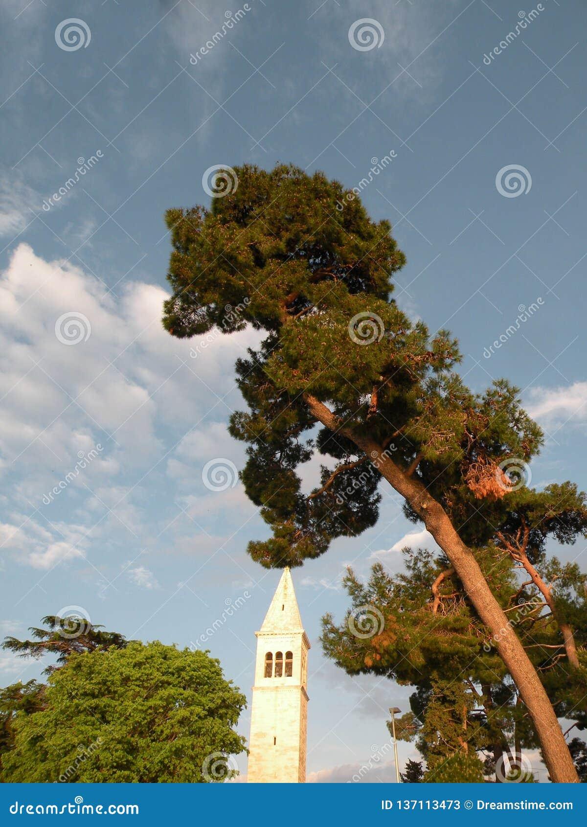 Vecchia città di Istrian di Novigrad, Croazia Una bella chiesa con un alto campanile elegante, i vicoli di pietra e una vecchia c