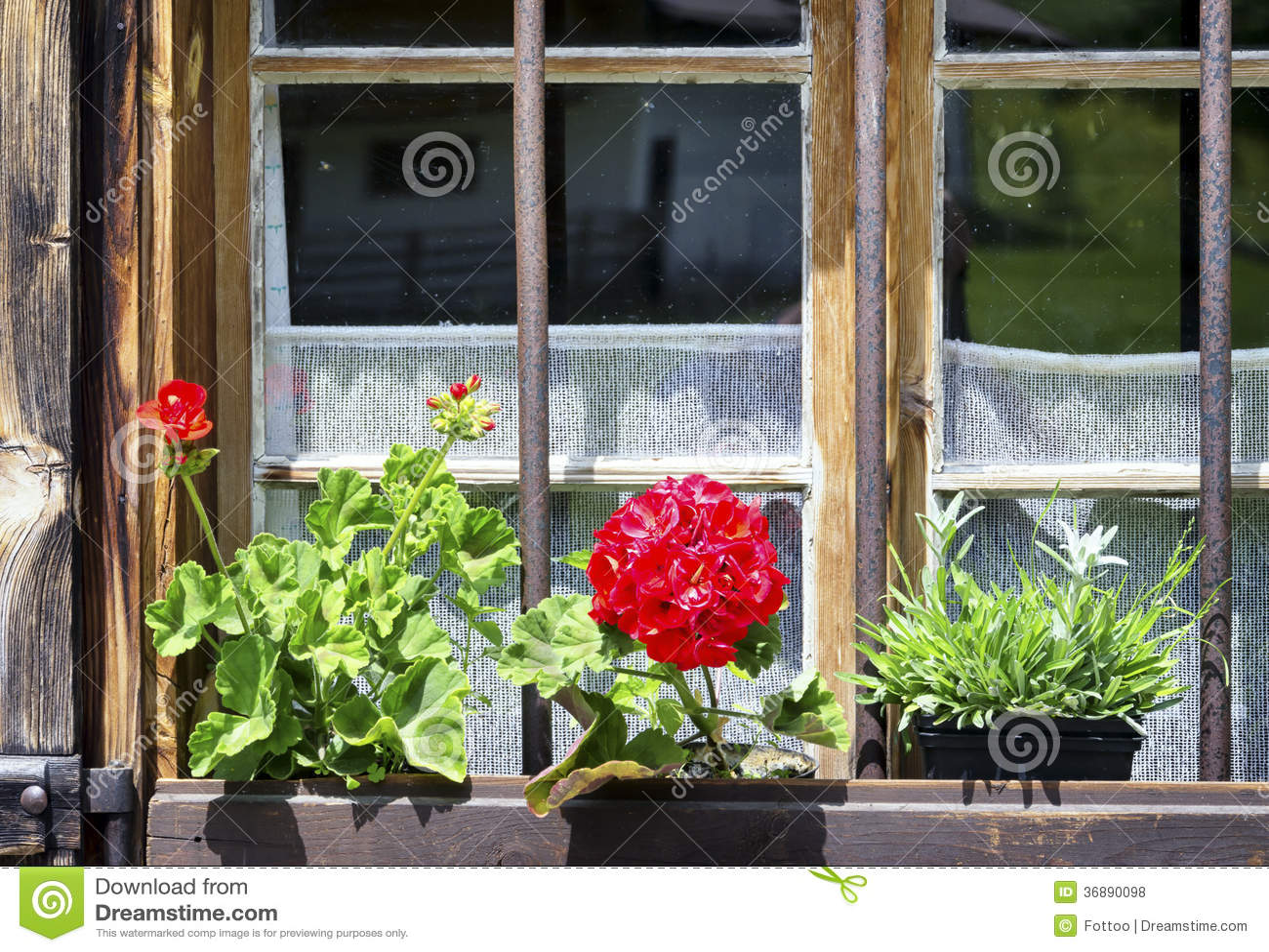 Download Vecchia finestra fotografia stock. Immagine di rurale - 36890098