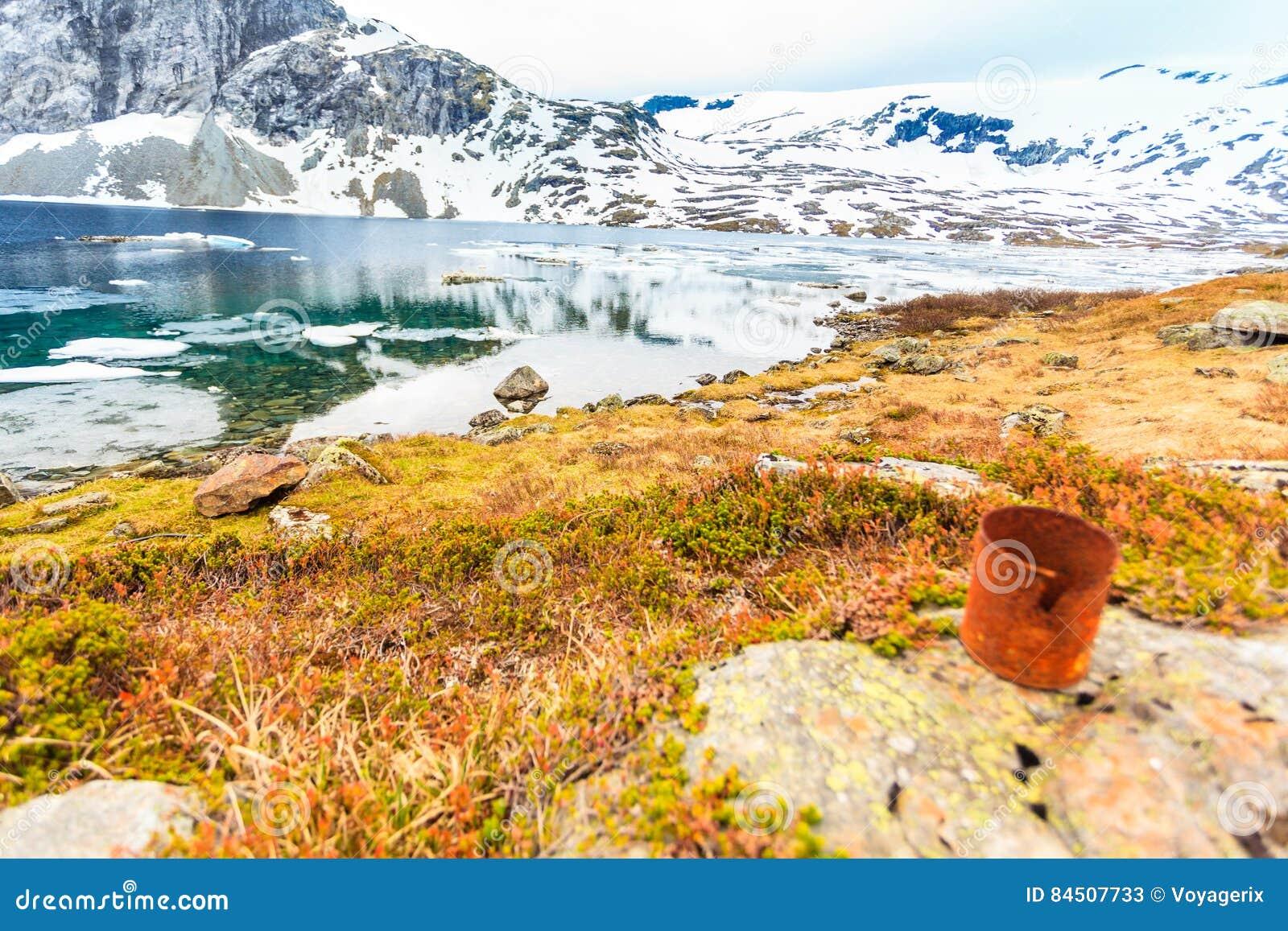Vecchia latta arrugginita sulla riva del lago Ecologia della terra