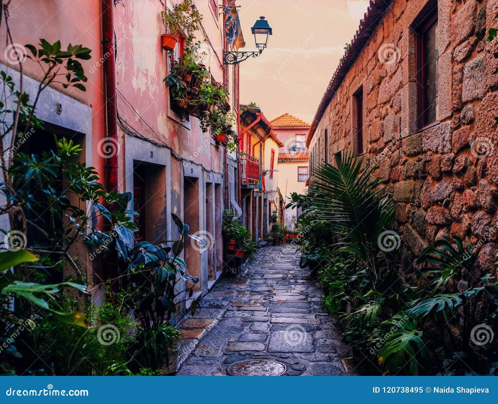 Vecchia parte della città di Oporto