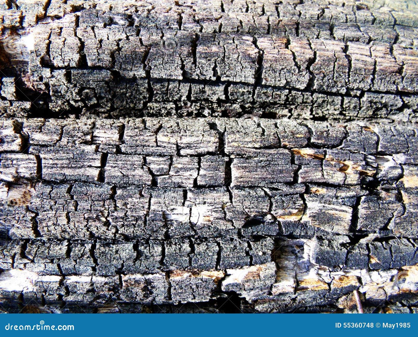 Vecchia priorità bassa di legno di struttura