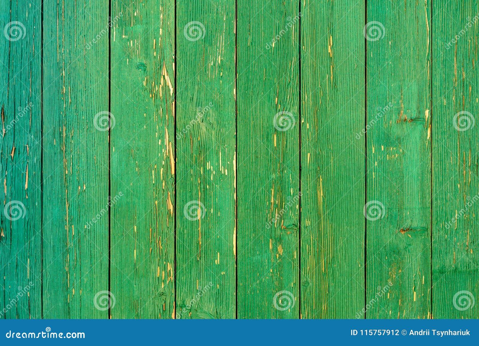 Vecchia struttura stupefacente bella di una parete di legno verde con pittura incrinata