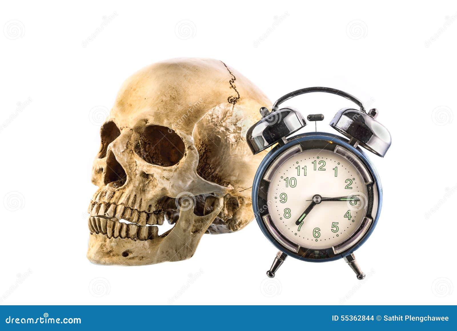 Vecchia sveglia e cranio umano su fondo bianco
