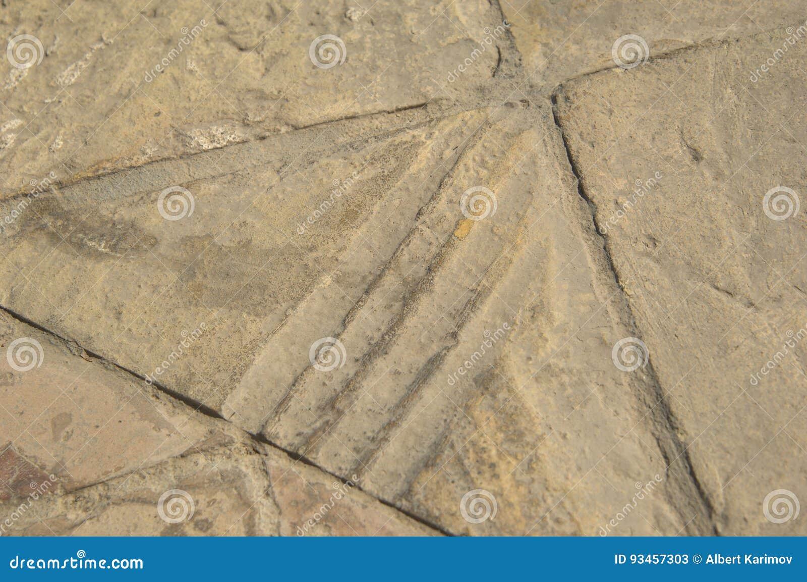 Vecchie piastrelle per pavimento immagine stock immagine di