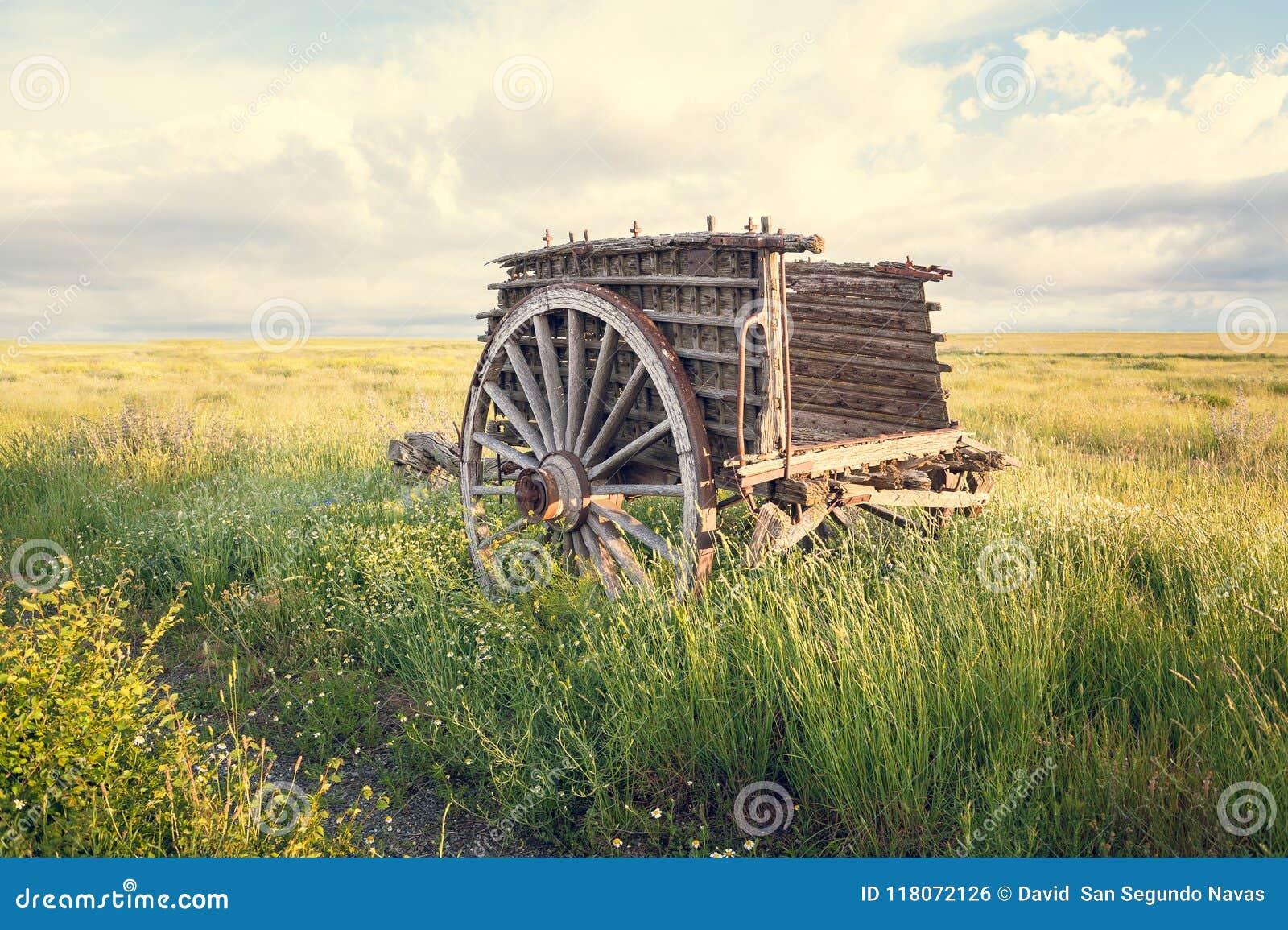 Copertura In Legno Isolata : Vecchio carrello di legno nella priorità alta isolata nel suo