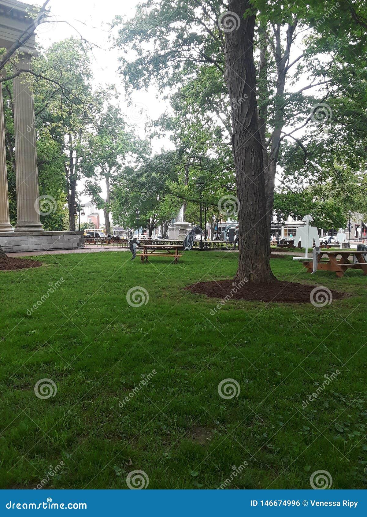 Vecchio frankfurter del Campidoglio dello stato del cortile