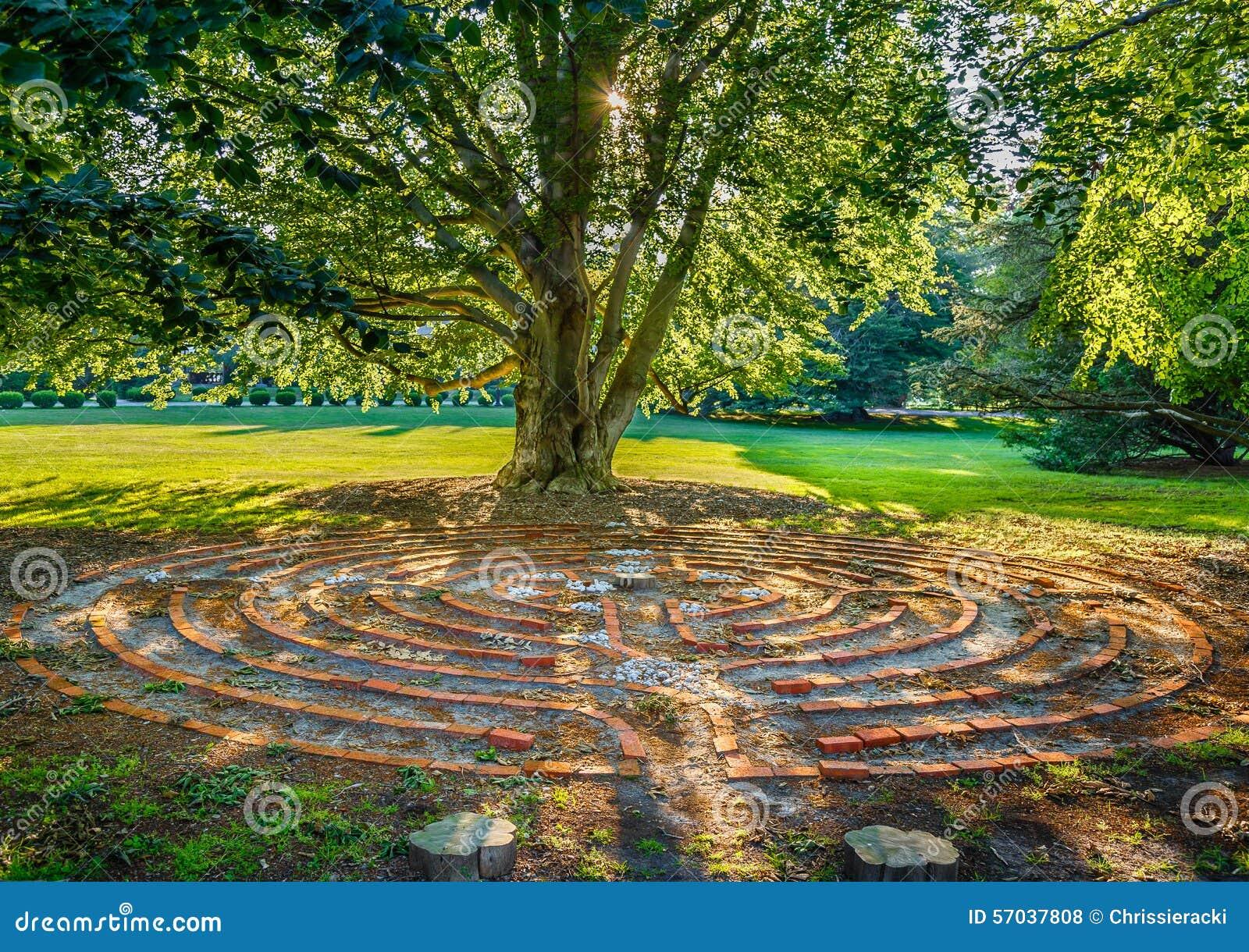 Vecchio labirinto del cerchio del mattone dell albero