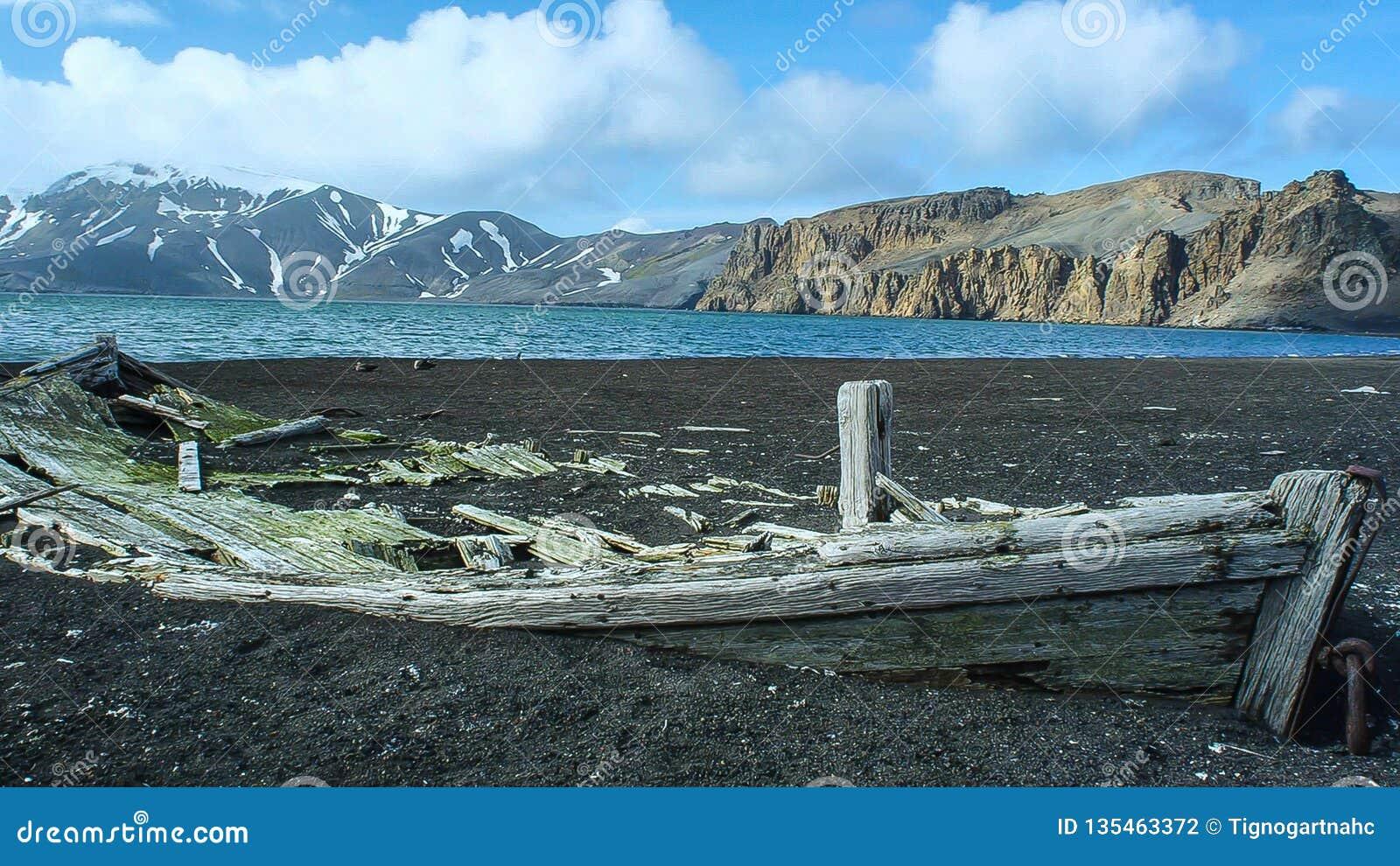 Vecchio relitto della nave alla riva in Antartide