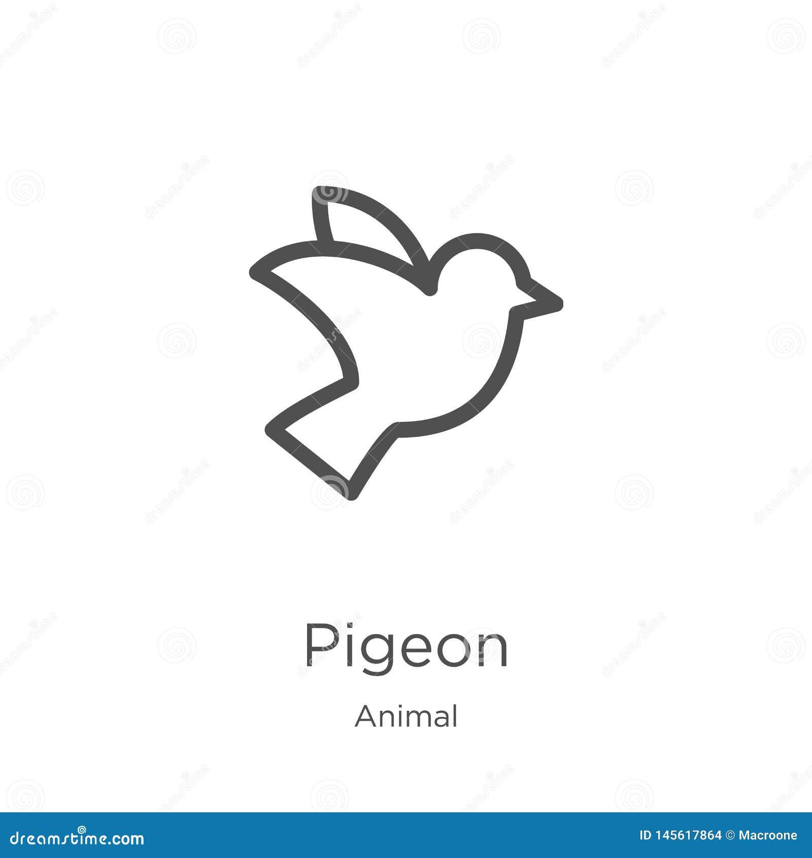 Vecteur d icône de pigeon de la collection animale Ligne mince illustration de vecteur d ic?ne d ensemble de pigeon Contour, lign