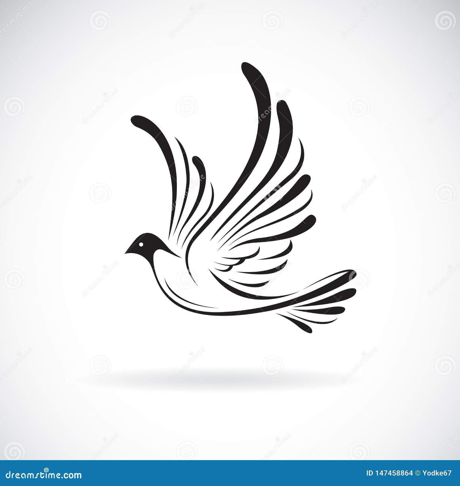 Vecteur de conception de birdsDove sur un fond blanc, Animaux sauvages Logo ou ic?ne d oiseau Illustration pos?e editable facile
