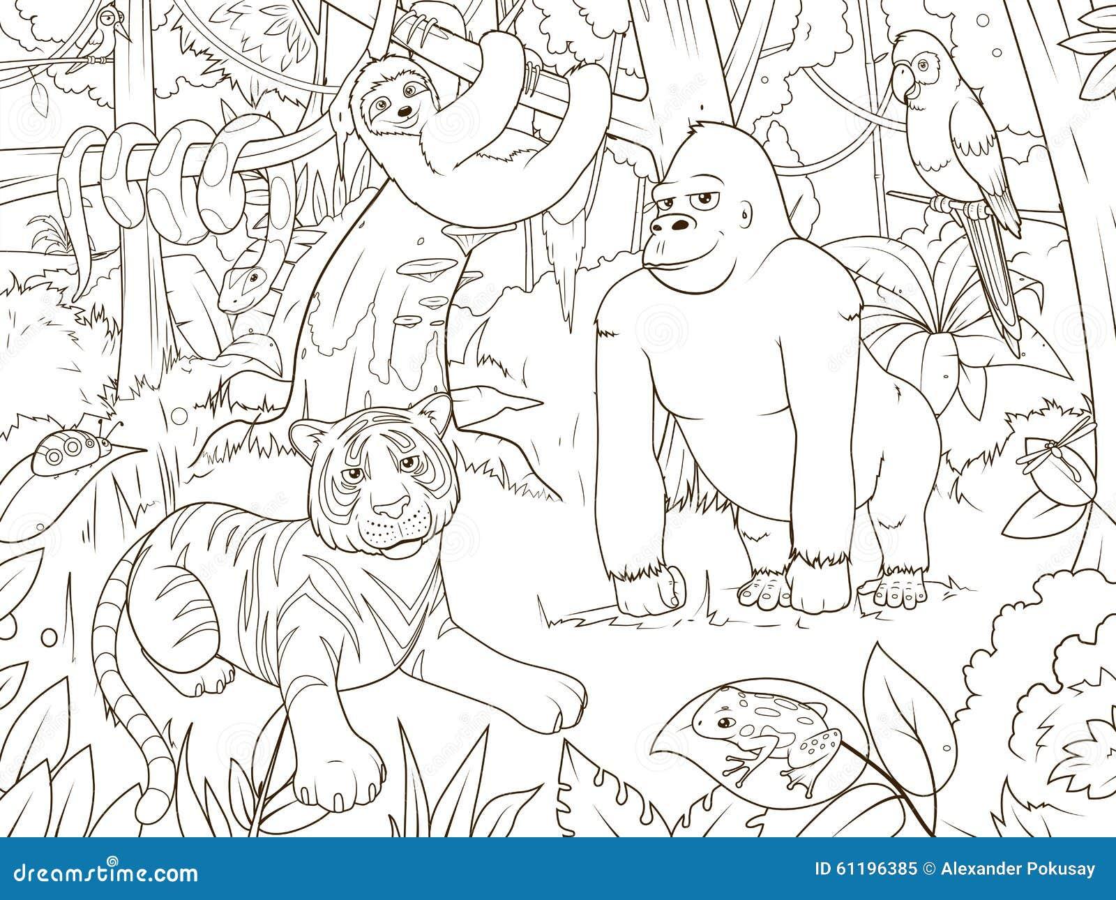 Vecteur De Livre De Coloriage De Bande Dessinee D Animaux De Jungle Illustration De Vecteur Illustration Du Coloriage Dessinee 61196385