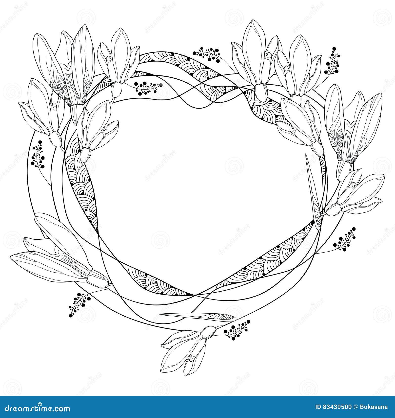 Vector вокруг рамки с богато украшенными цветками Snowdrop плана или Galanthus изолированной на задней части белизны Флористическ