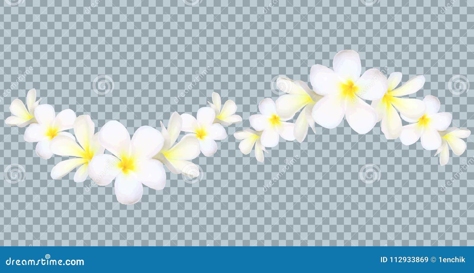 Vector граница цветков Бали на предпосылке решетки прозрачности