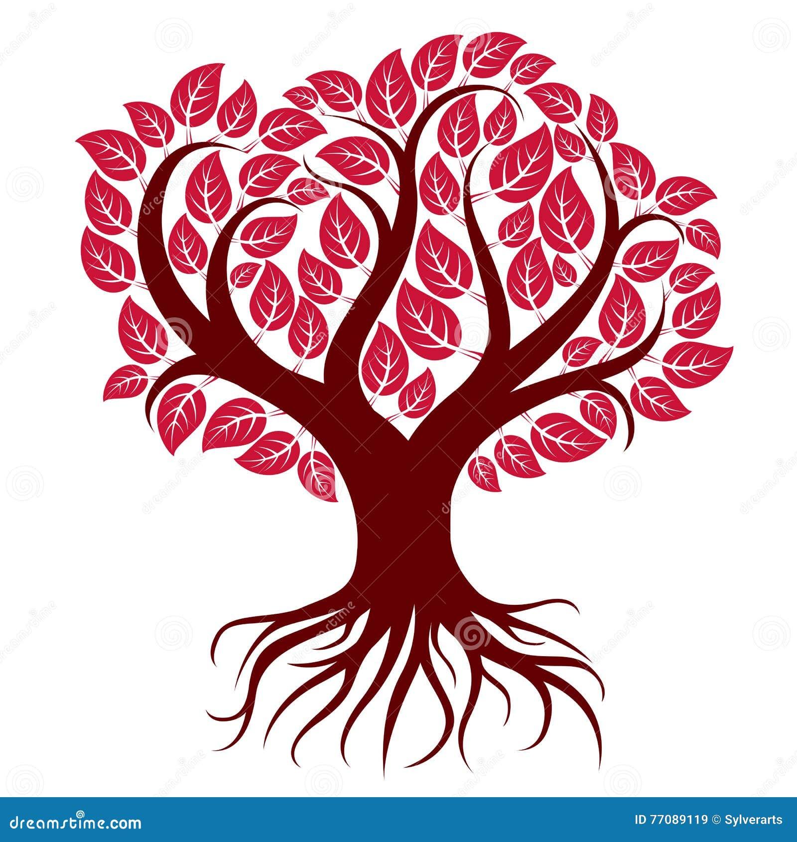 Vector иллюстрация искусства Branchy дерева с сильными ...