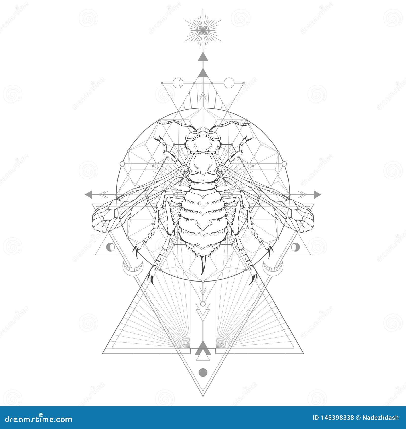 Иллюстрация вектора с осой руки вычерченной и священный геометрический символ на белой предпосылке Абстрактный мистический знак