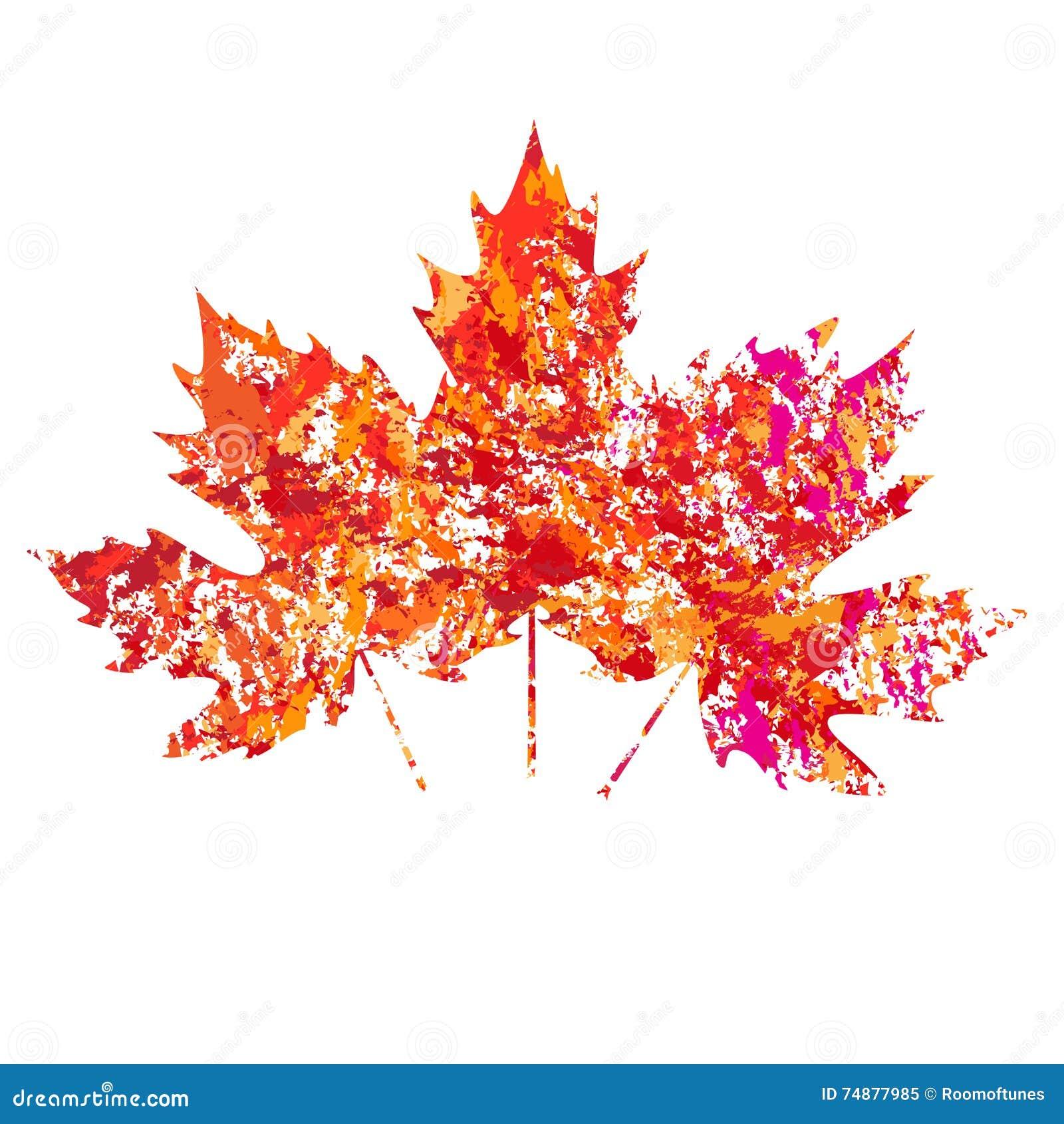 Vector as folhas de bordo coloridas outono no fundo branco no estilo do grunge