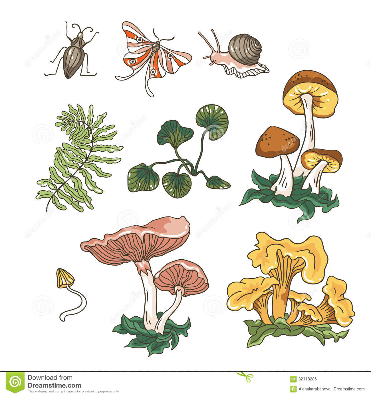 Vector autumn set of mushrooms, fern, plants and insects.