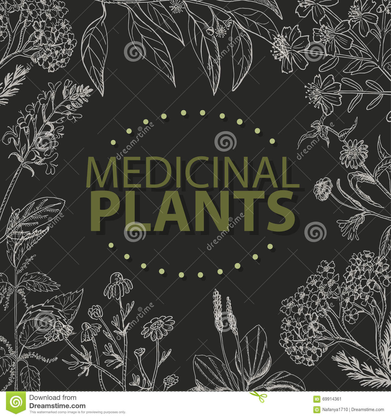 Vector background with medical herbs on a black background stock vector background with medical herbs on a black background stopboris Images