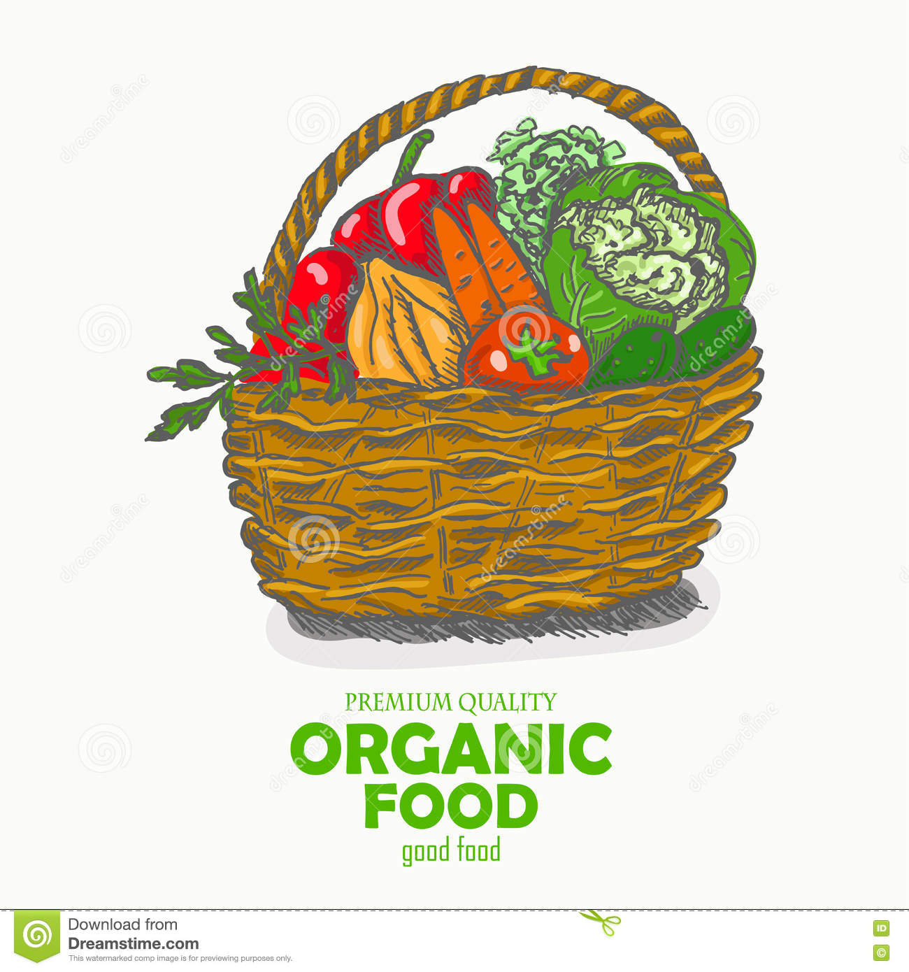 Vector Background With Vegetables In The Basket Organic Food Stock