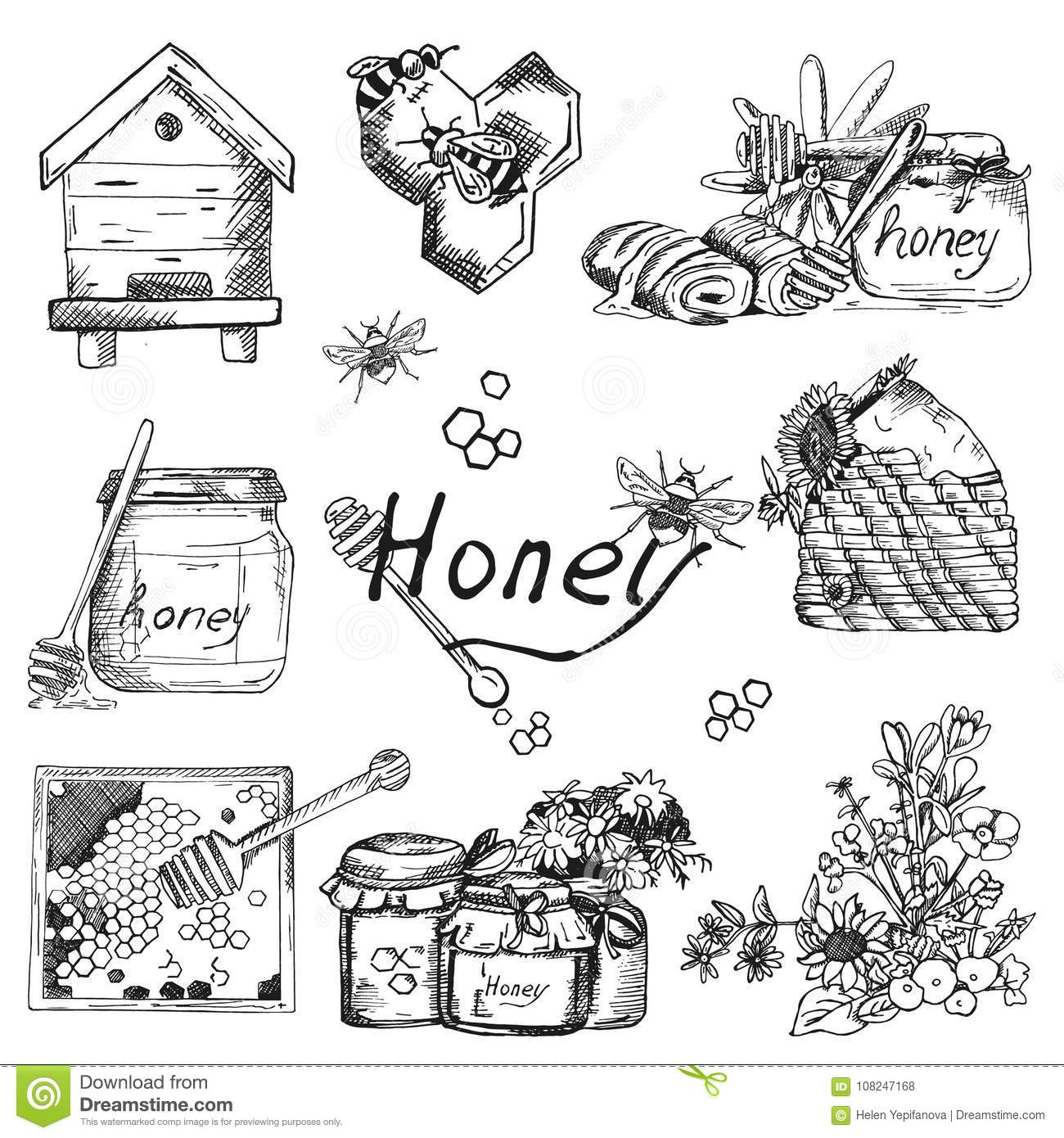 Vector background wallpaper sketch style honey beekeeping color hand drawn set