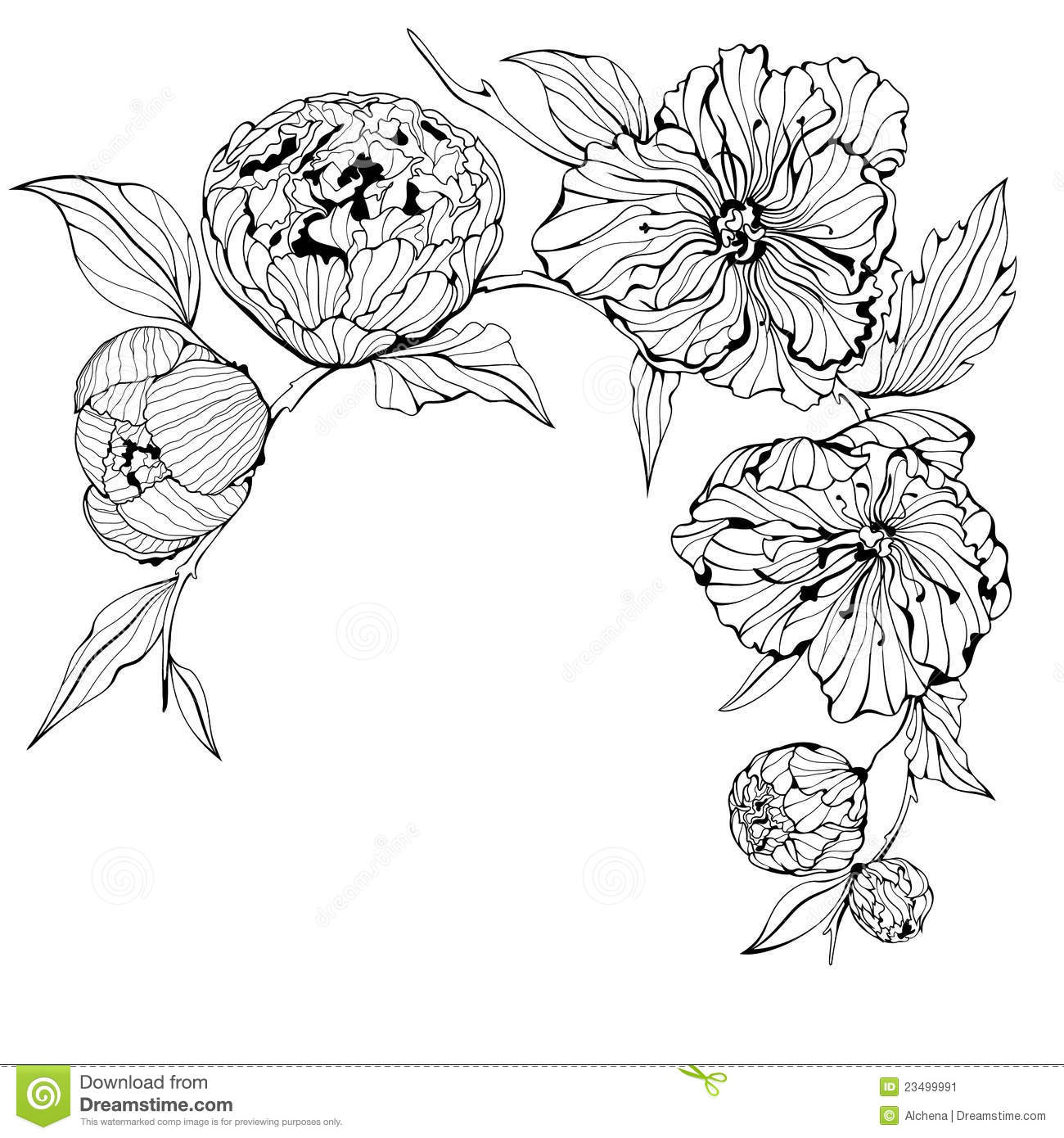 Vector Black And White Background With Flowers Stock