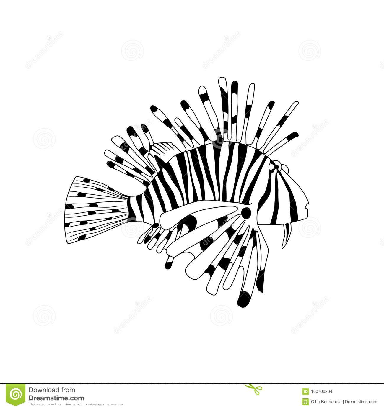 explore coloring books adult and more coloring book lionfish