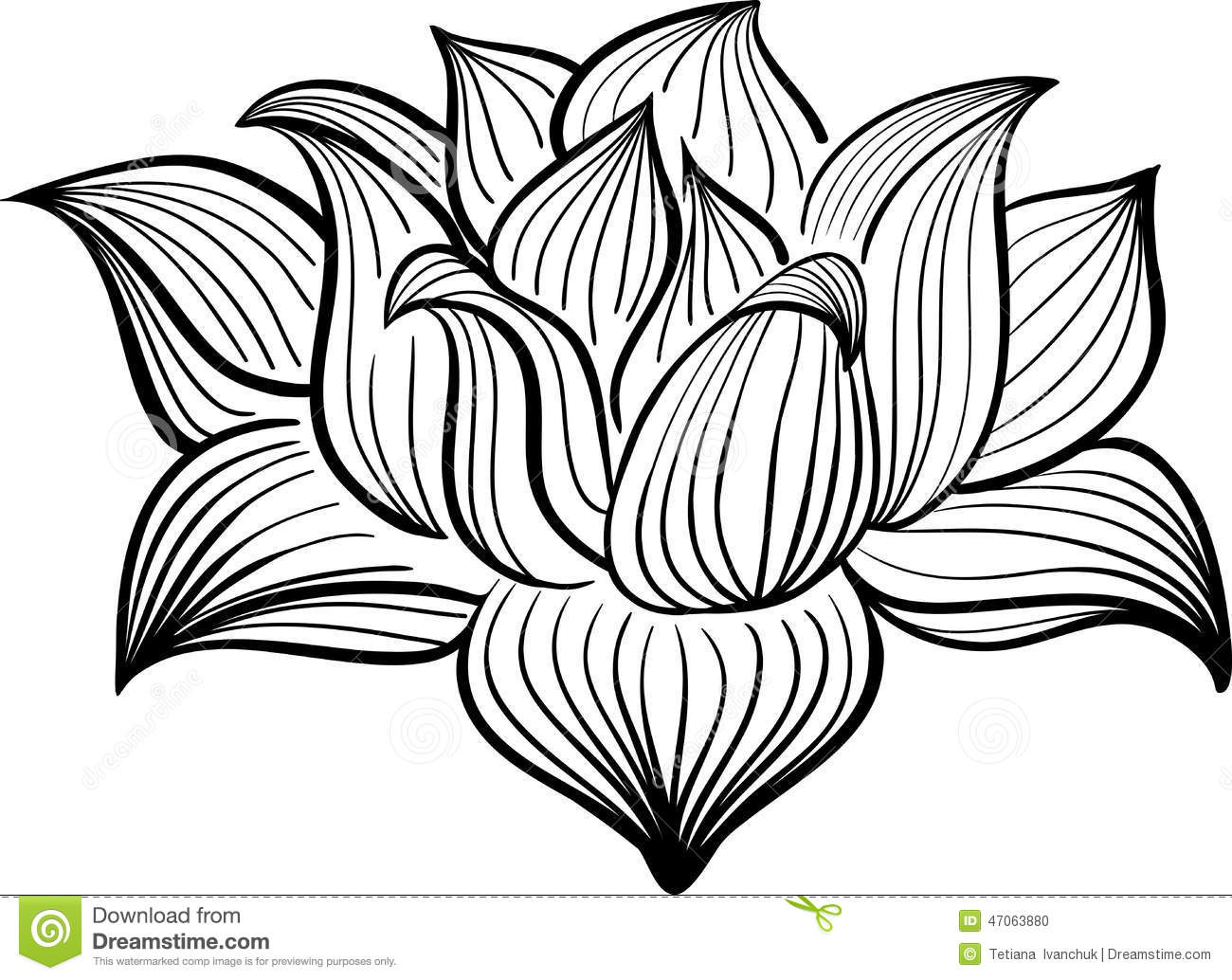 Line Art Styles : Vector black and white lotus flower stock image