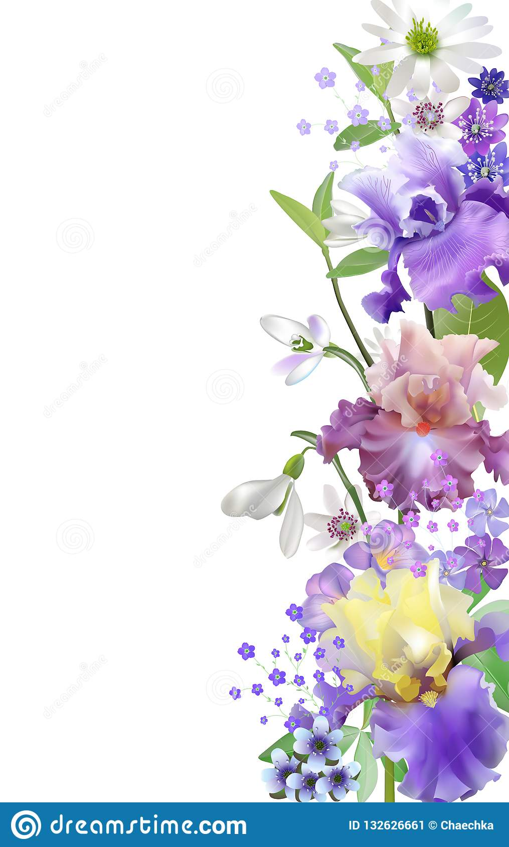 Vector botanical banner with irises and spring blue flowers. Floral design for natural cosmetics, couples and other women`s