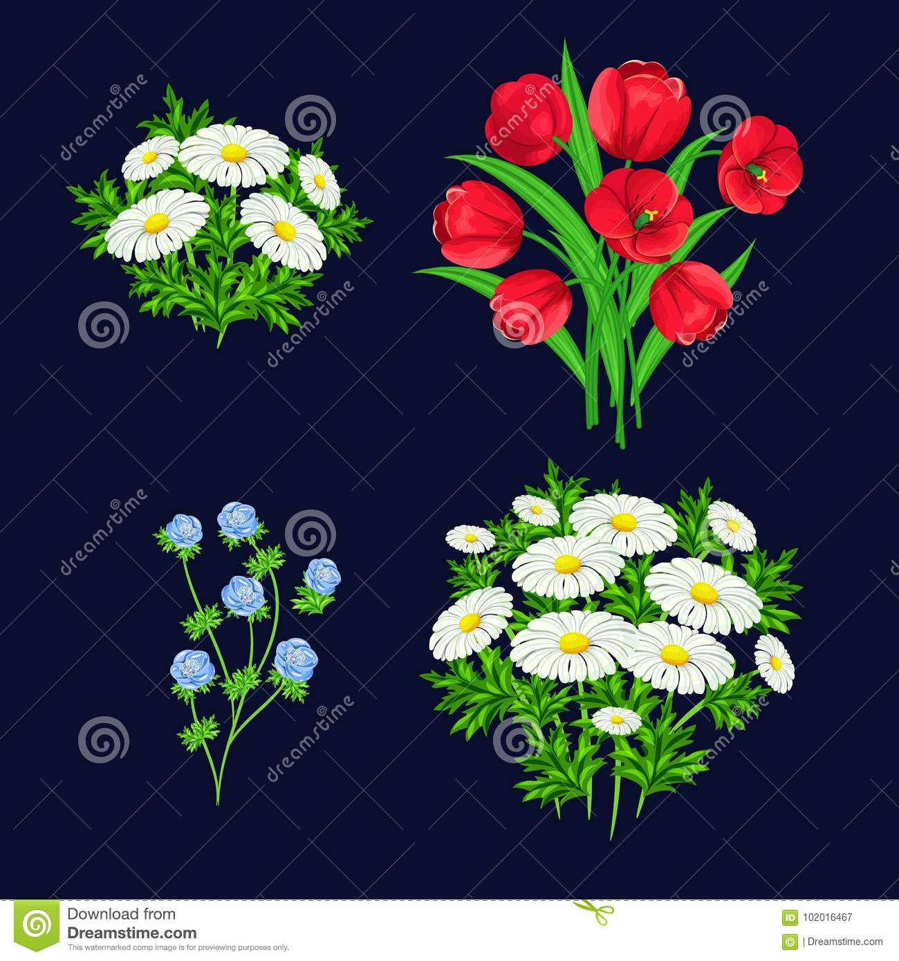 Vector Bouquet Of Flowers Stock Vector Illustration Of Greeting