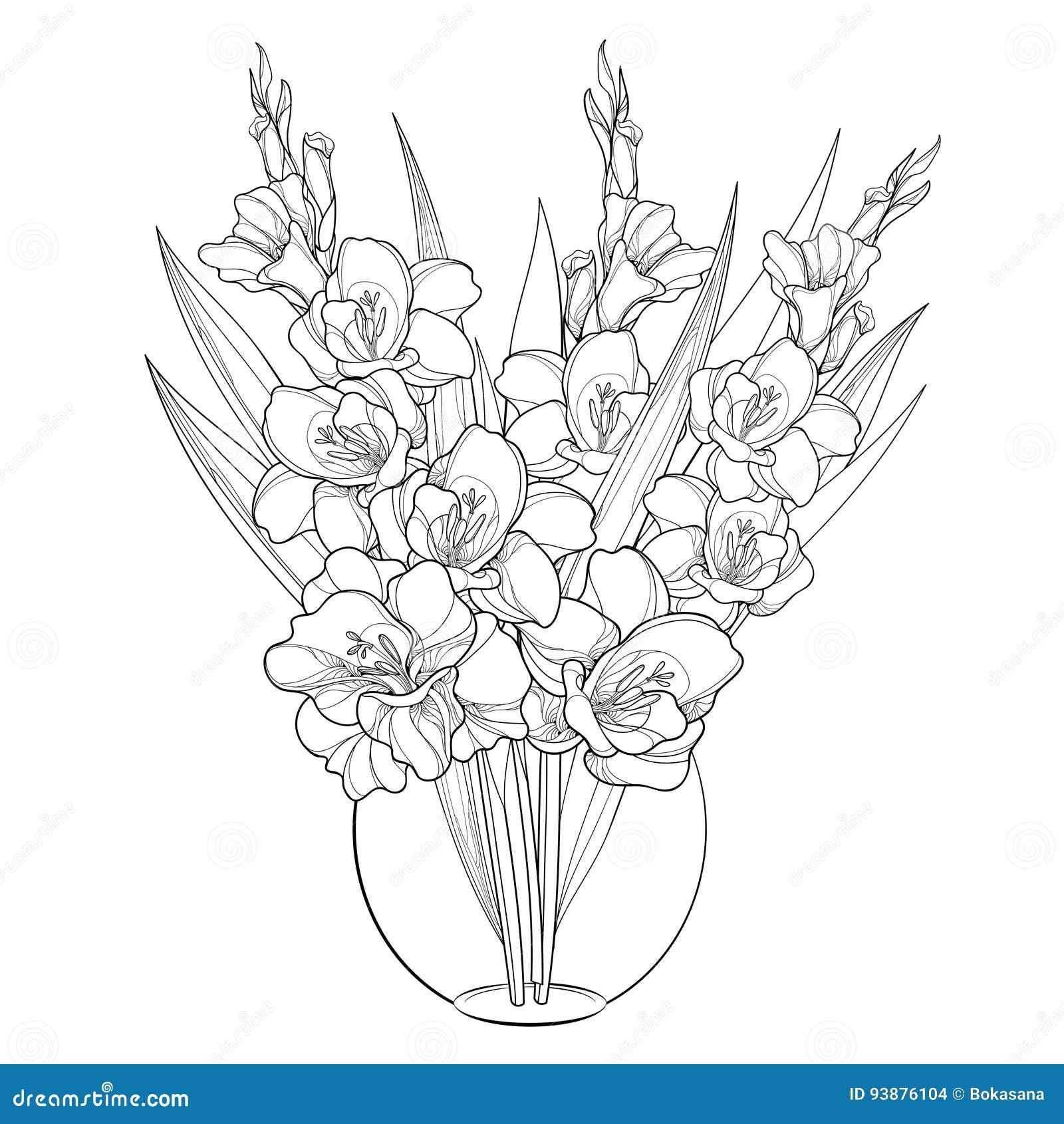 Gladiolus cartoons illustrations vector stock images for Bouquet de lys