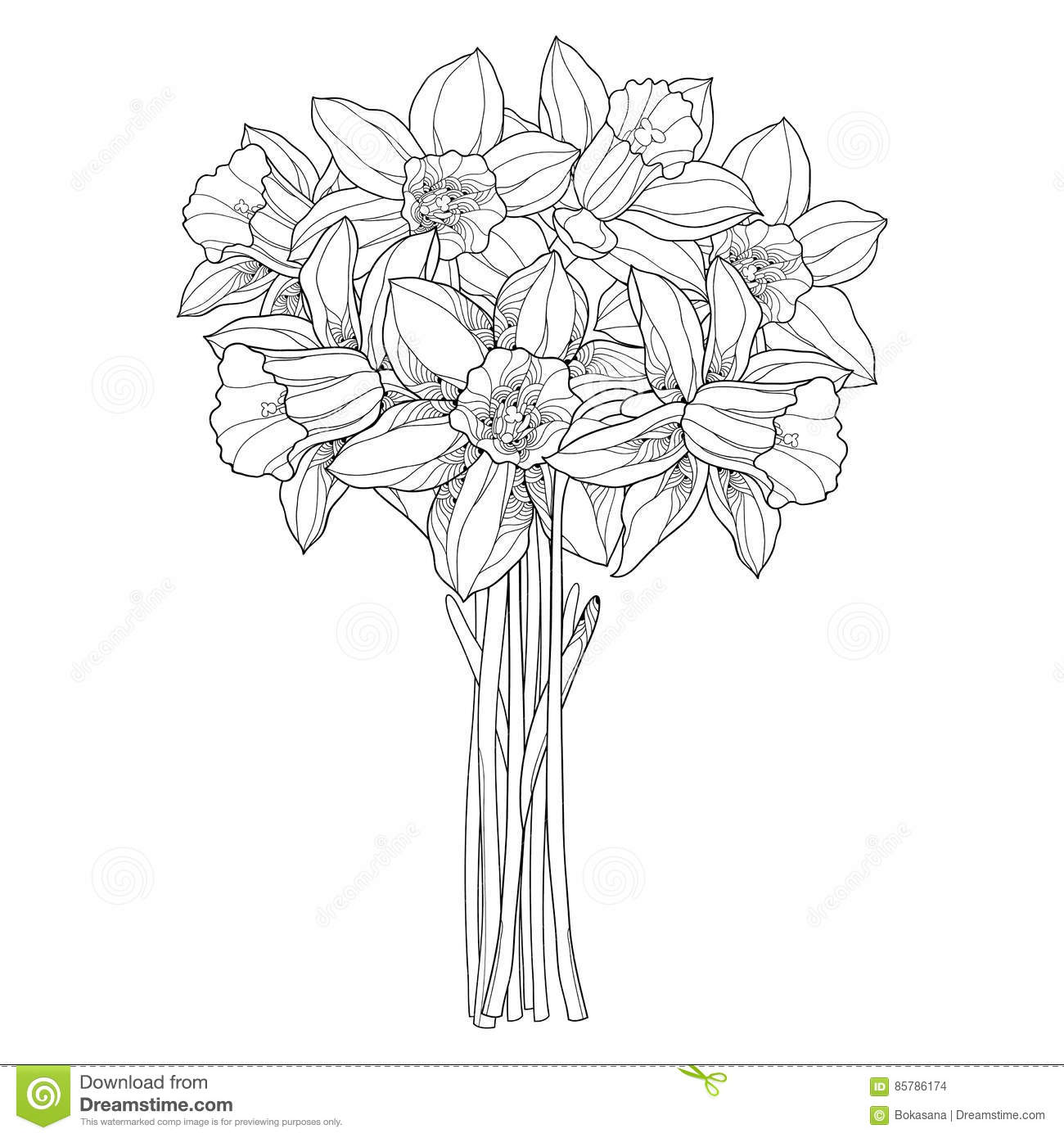 Vector bouquet with outline narcissus or daffodil flowers in black download vector bouquet with outline narcissus or daffodil flowers in black isolated on white ornate izmirmasajfo
