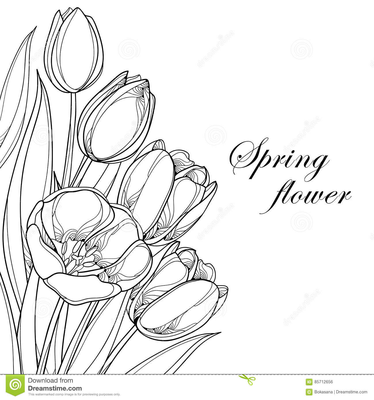 Vector bouquet with outline tulips flowers isolated on white ornate vector bouquet with outline tulips flowers isolated on white ornate floral elements for spring design and coloring book mightylinksfo