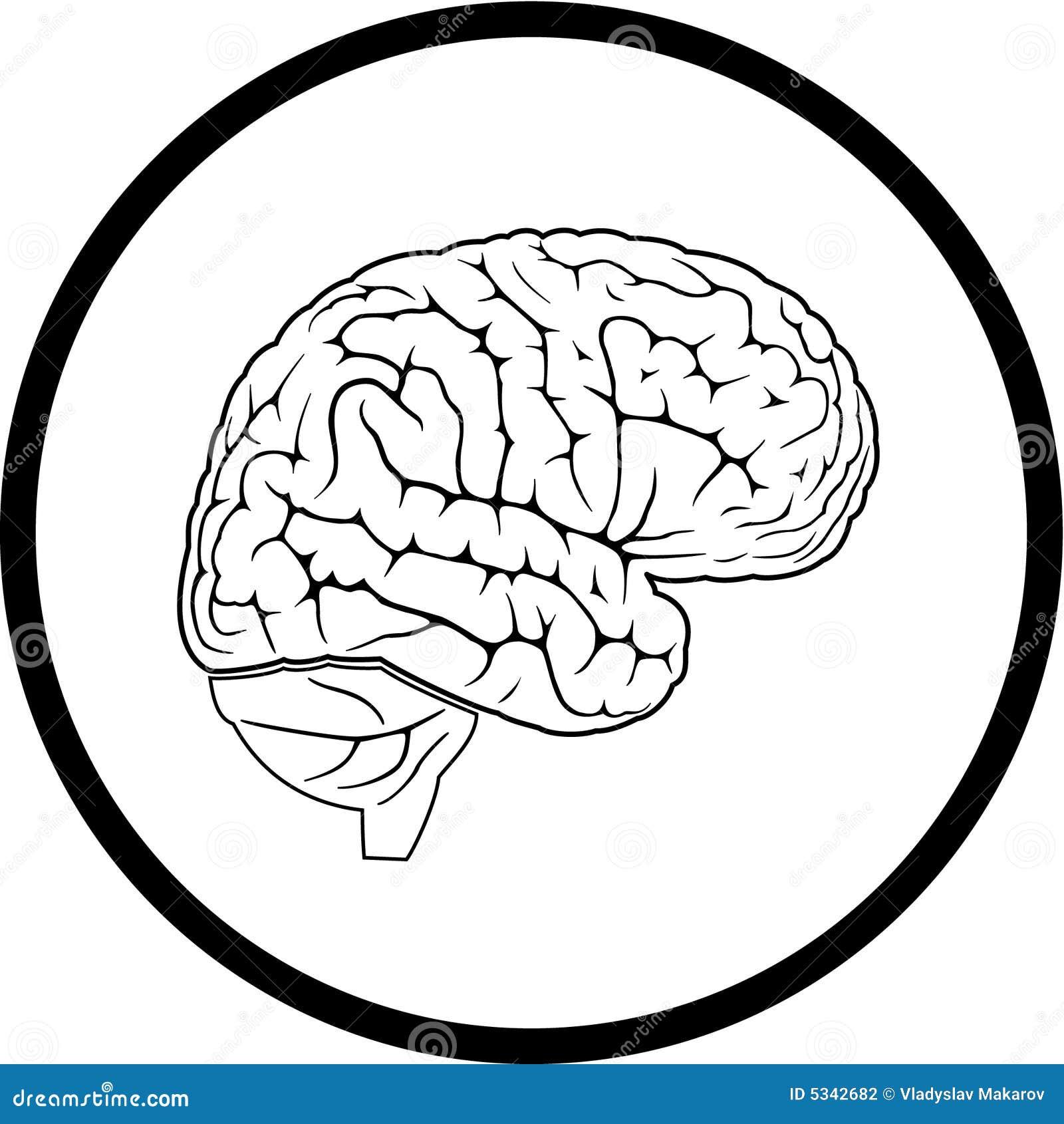 Vector Brain Icon Stock Photography Image 5342682