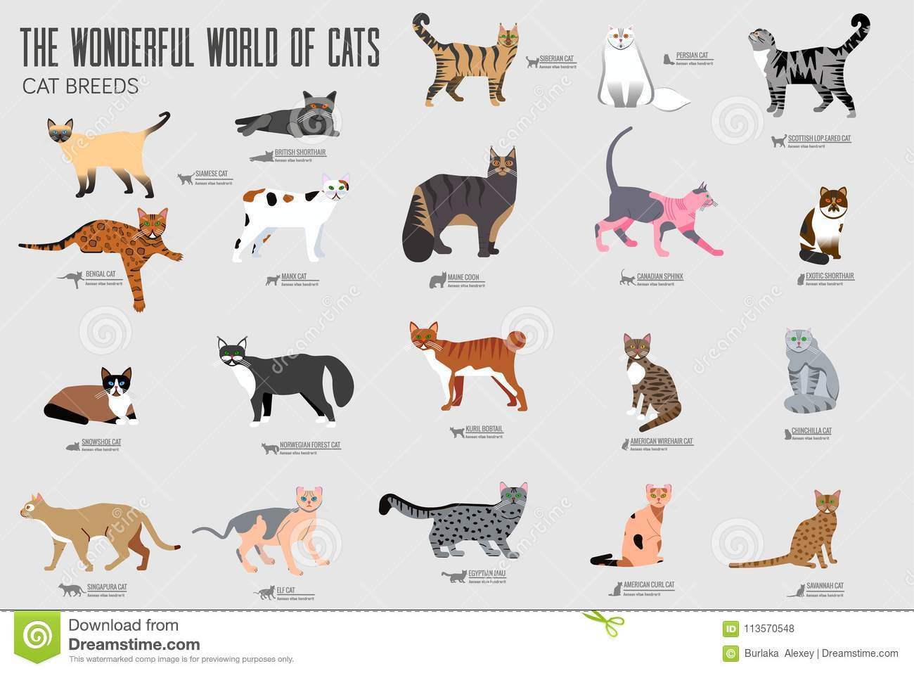 Vector Breed Cats Icons Set Cute Animal Illustrations Pet