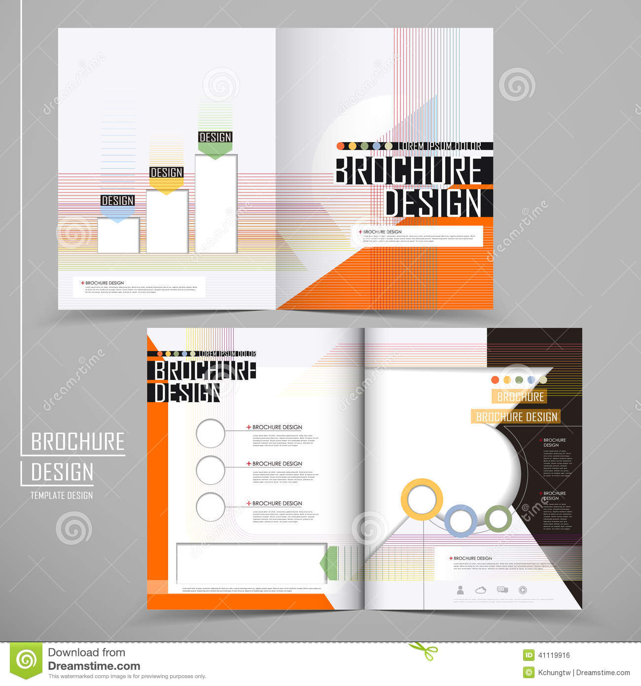 Vector Brochure Layout Design Template Stock Vector Image - Single fold brochure template