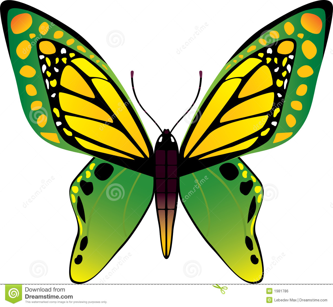 Vector Butterfly Royalty Free Stock Image - Image: 1981786