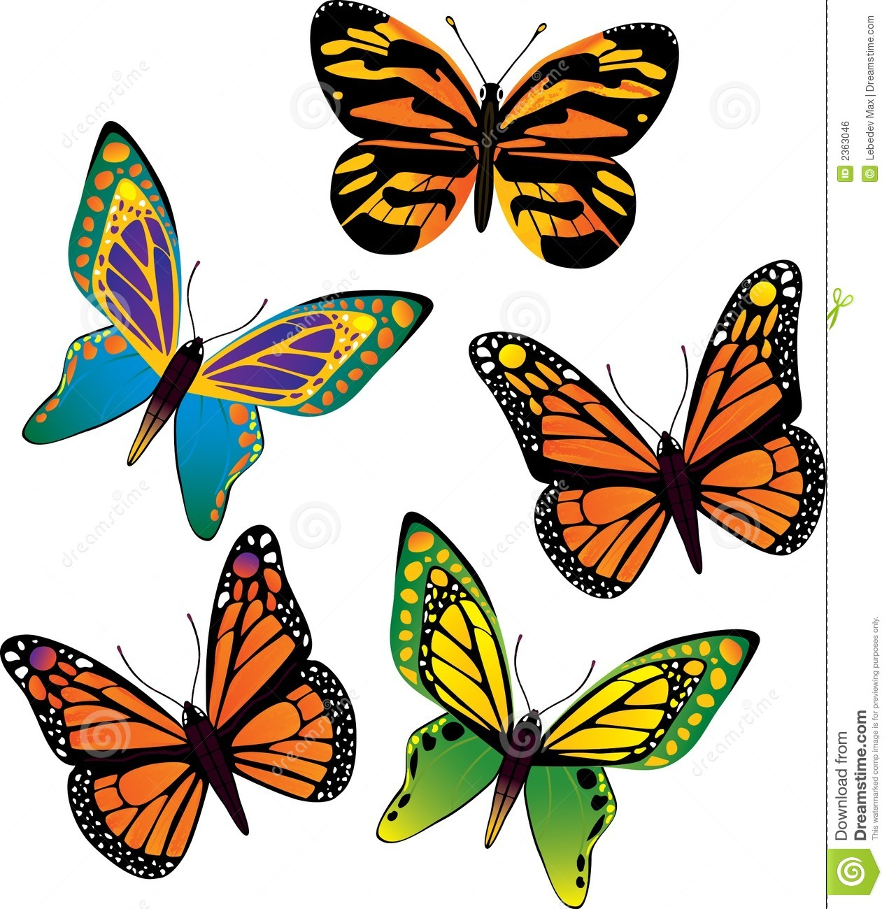 Vector Butterfly Royalty Free Stock Image - Image: 2363046