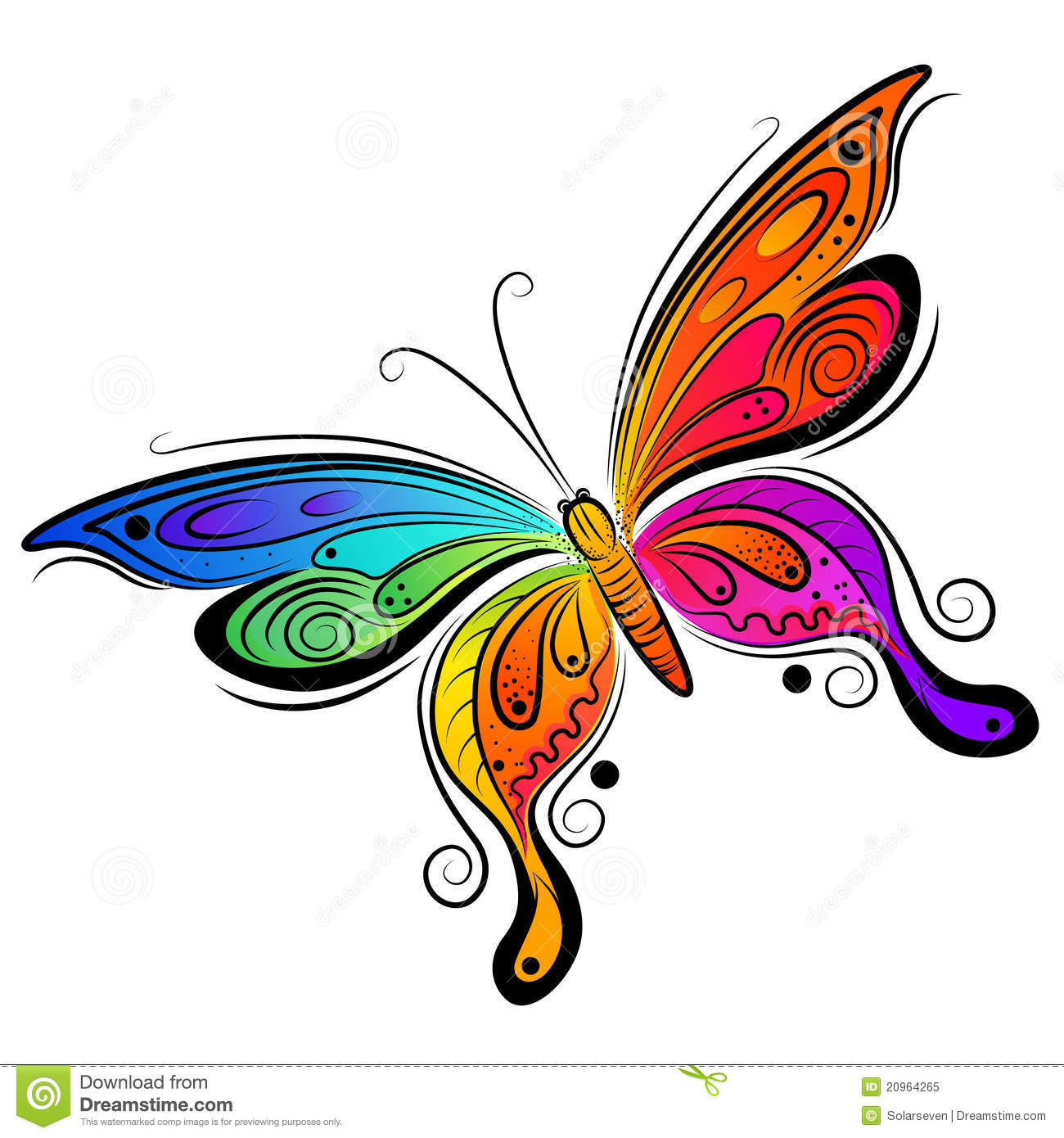 Vector Butterfly Design Stock Vector Illustration Of