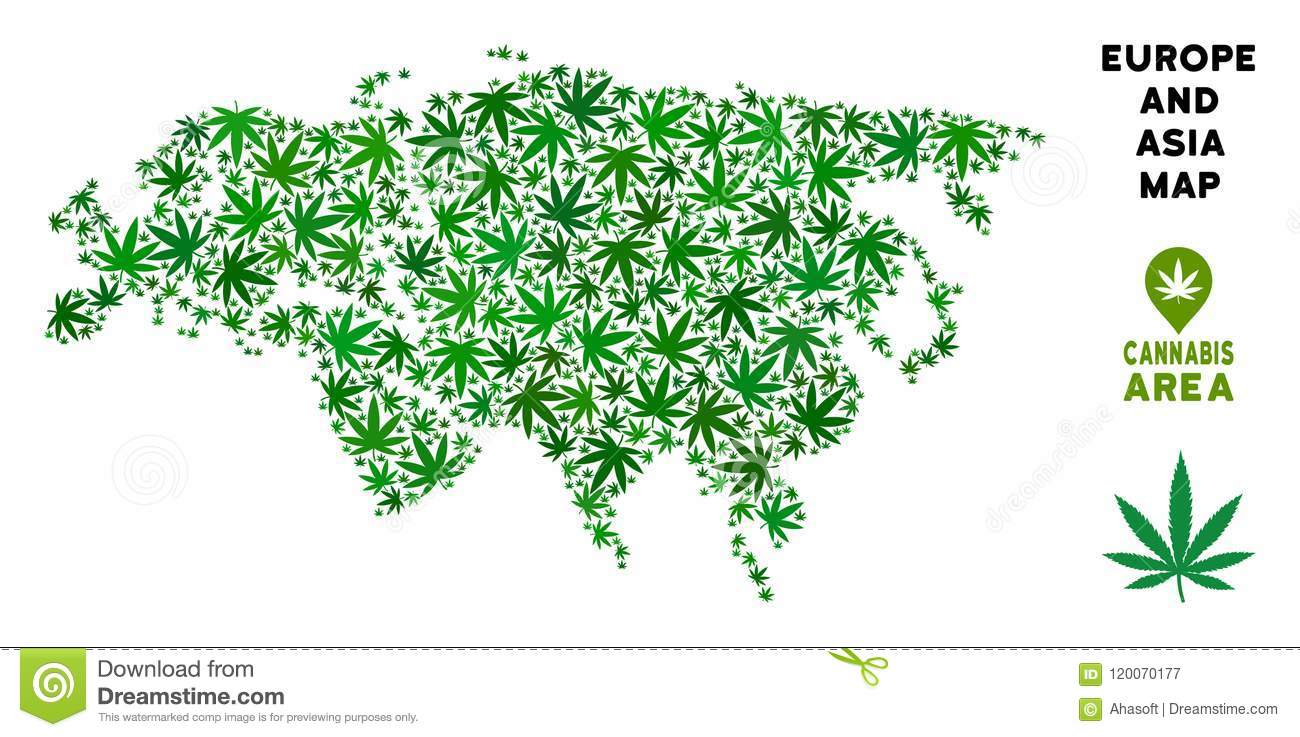 Vector Cannabis Collage Europe And Asia Map Stock Vector ...