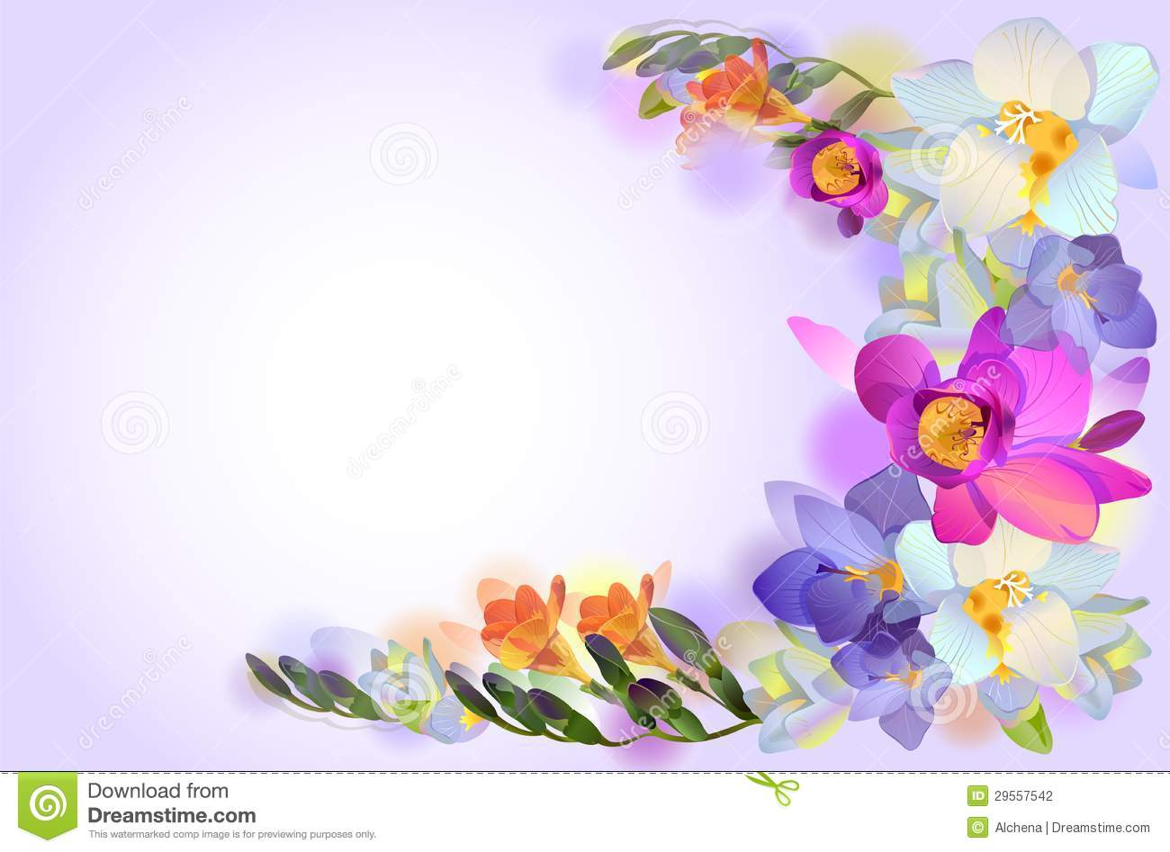 Vector Card With Branch Of Freesia Flowers Stock ...