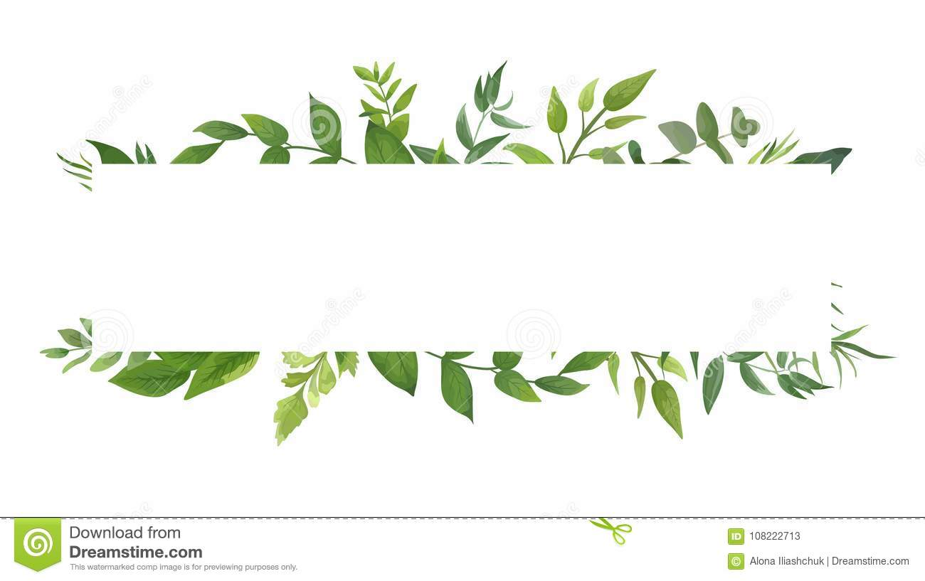 Vector Card Design With Green Fern Leaves Elegant Greenery