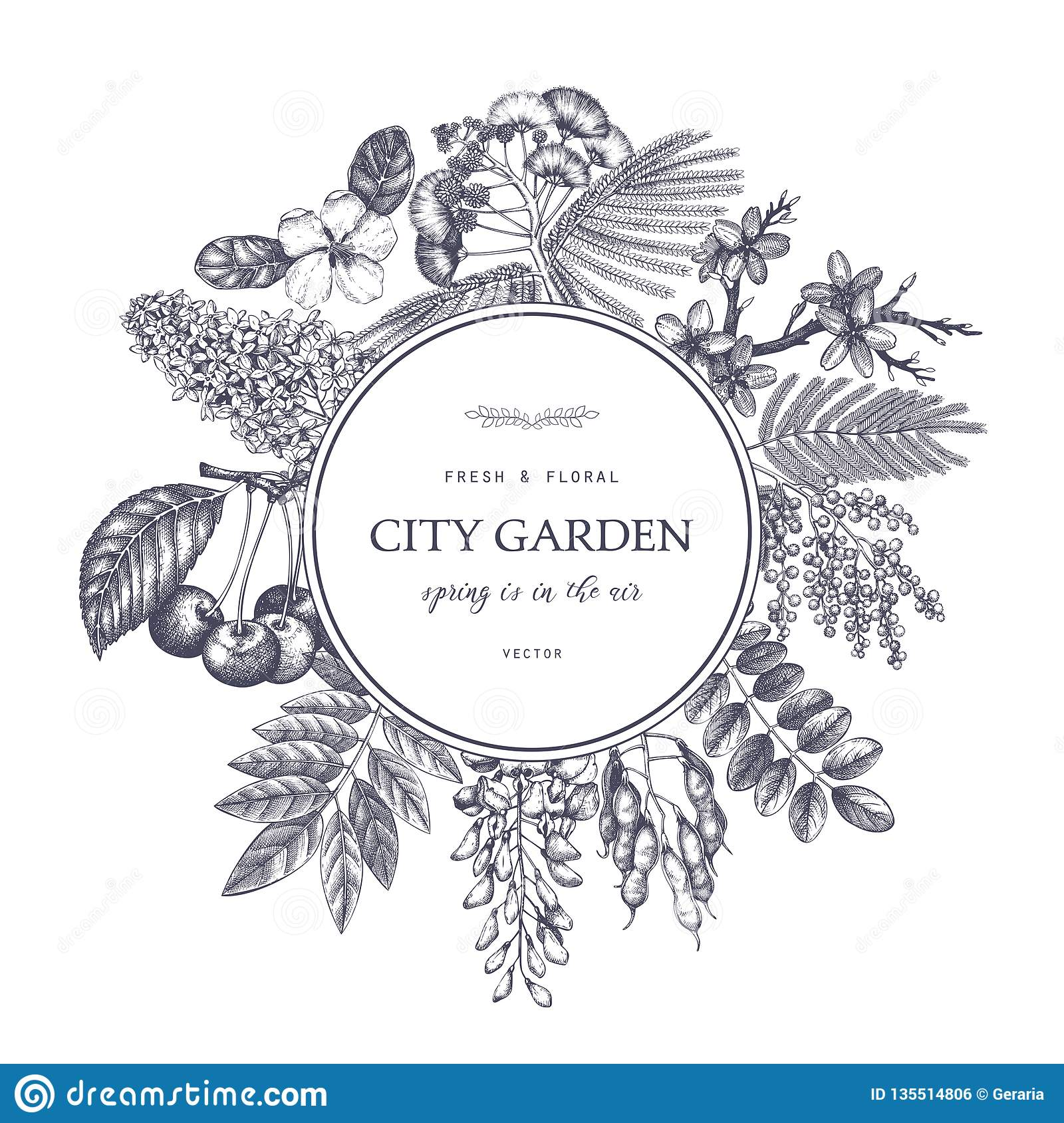 Vector Card Design With Hand Drawn Blossoming Trees Illustration