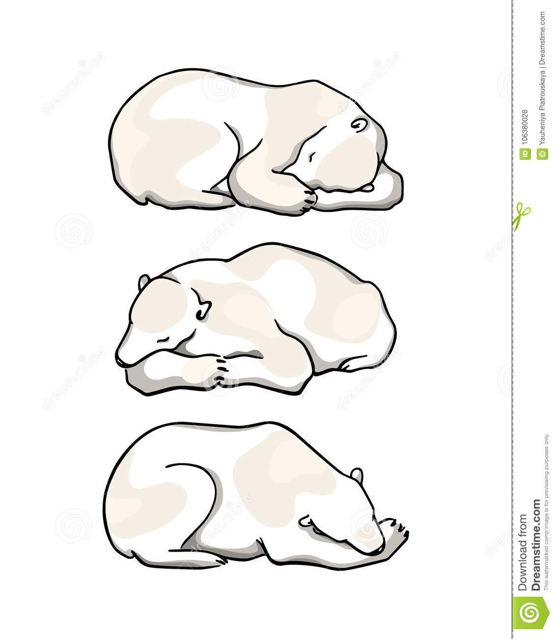 Vector Card With Hand Drawn Polar Bear Stock Vector