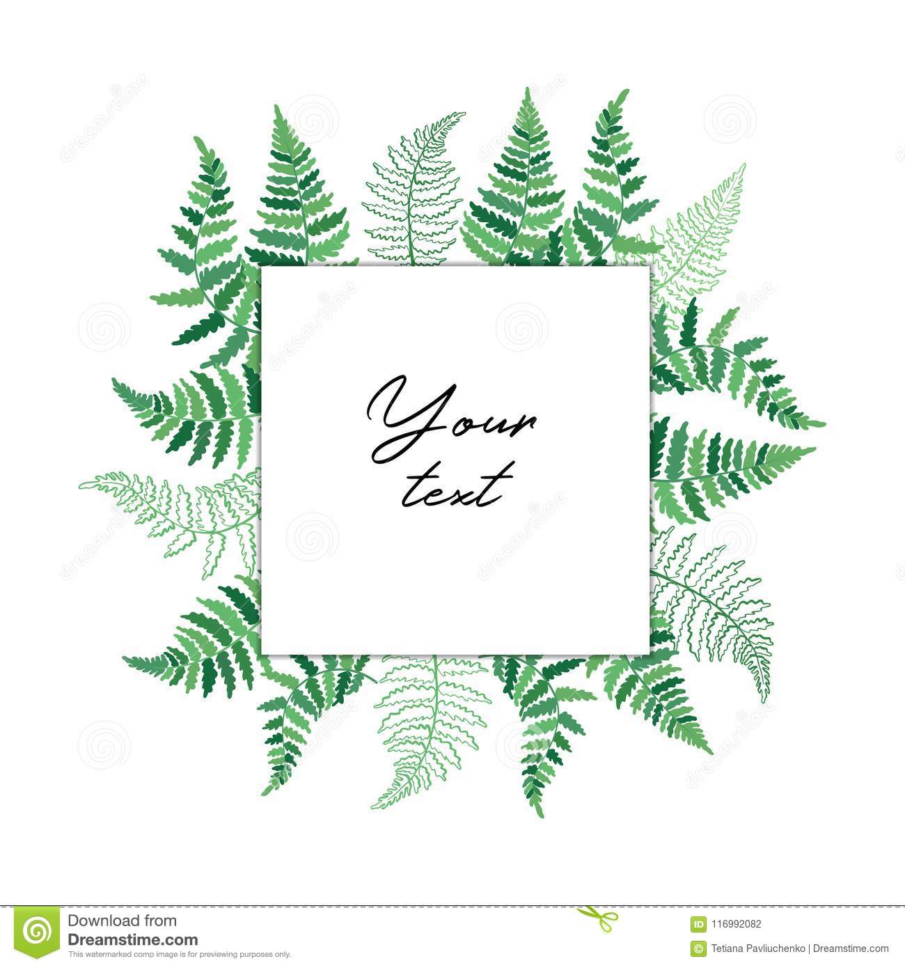 Vector Template Illustration With Fern Leaf Isolated Outline Drawing Modern Of Tropical Plant Card Exotic Leaves Silhouettes