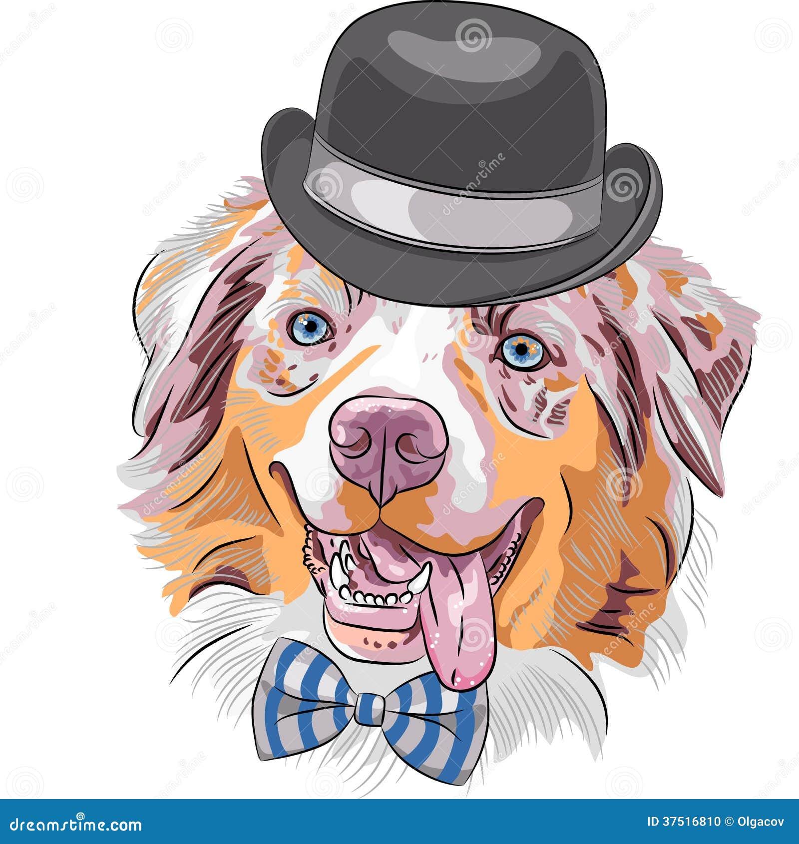Vector Cartoon Hipster Dog Australian Shepherd Stock Photo Image ...