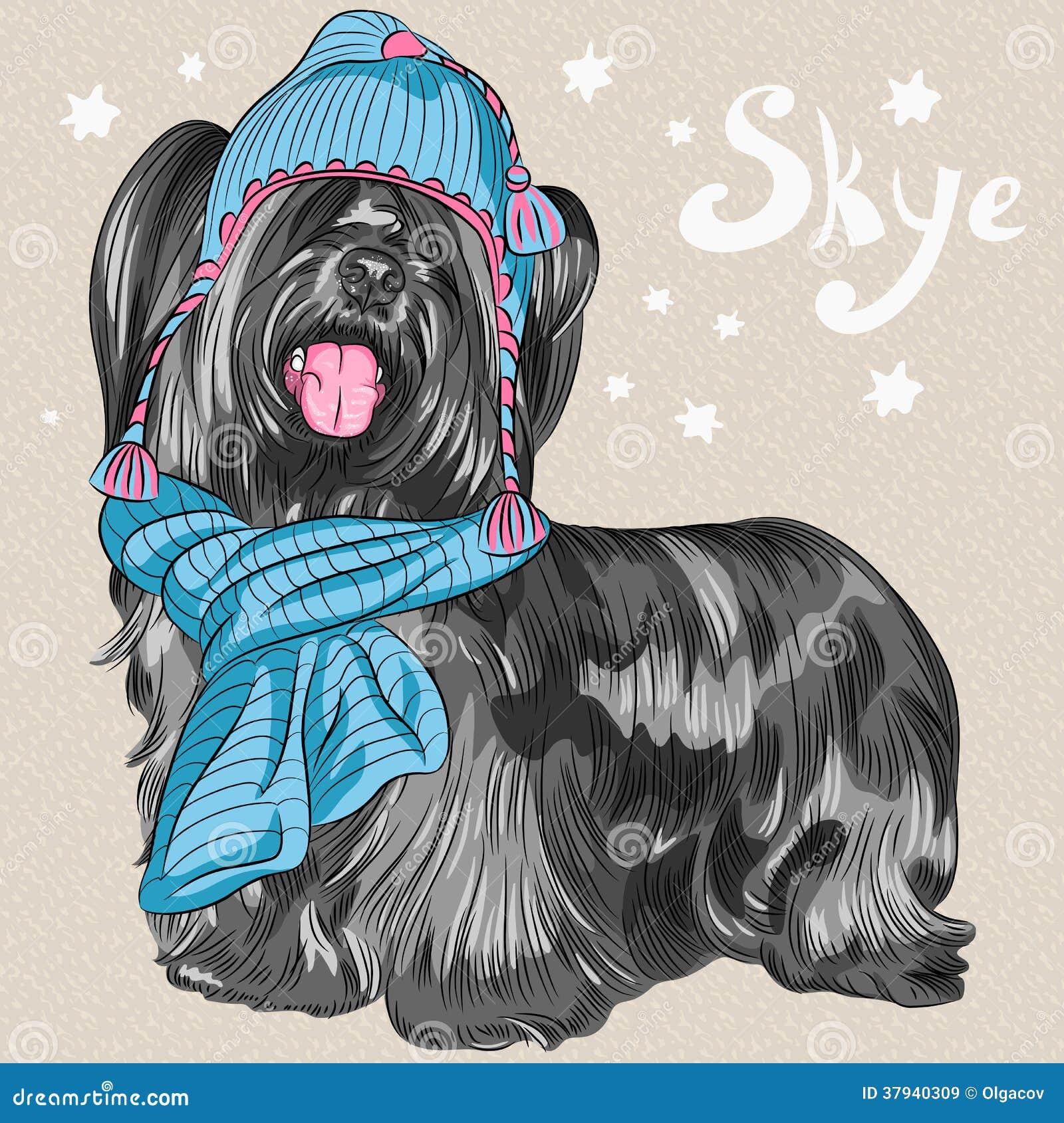 Vector Cartoon Hipster Dog Skye Terrier Breed Smiling ...