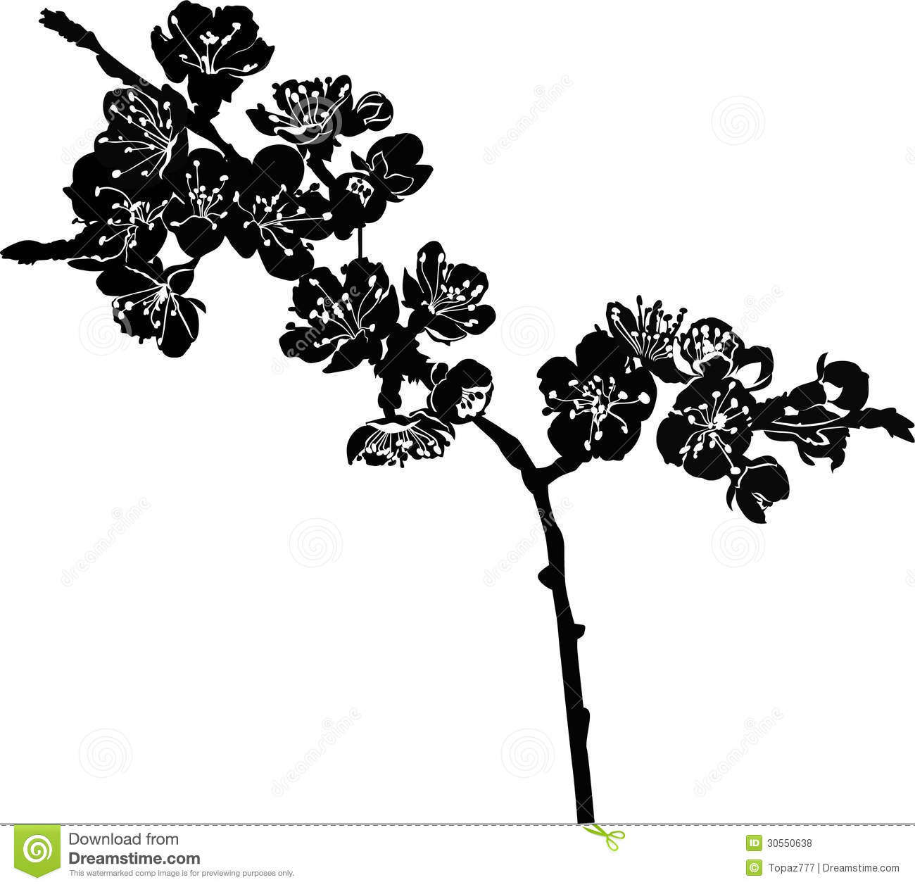 Vector Cherry Blossom Branch Royalty Free Stock Photos