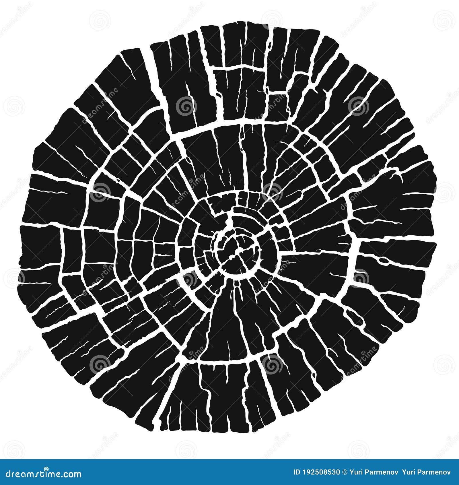 Black White Tree Stump Rings Stock Illustrations 271 Black White Tree Stump Rings Stock Illustrations Vectors Clipart Dreamstime