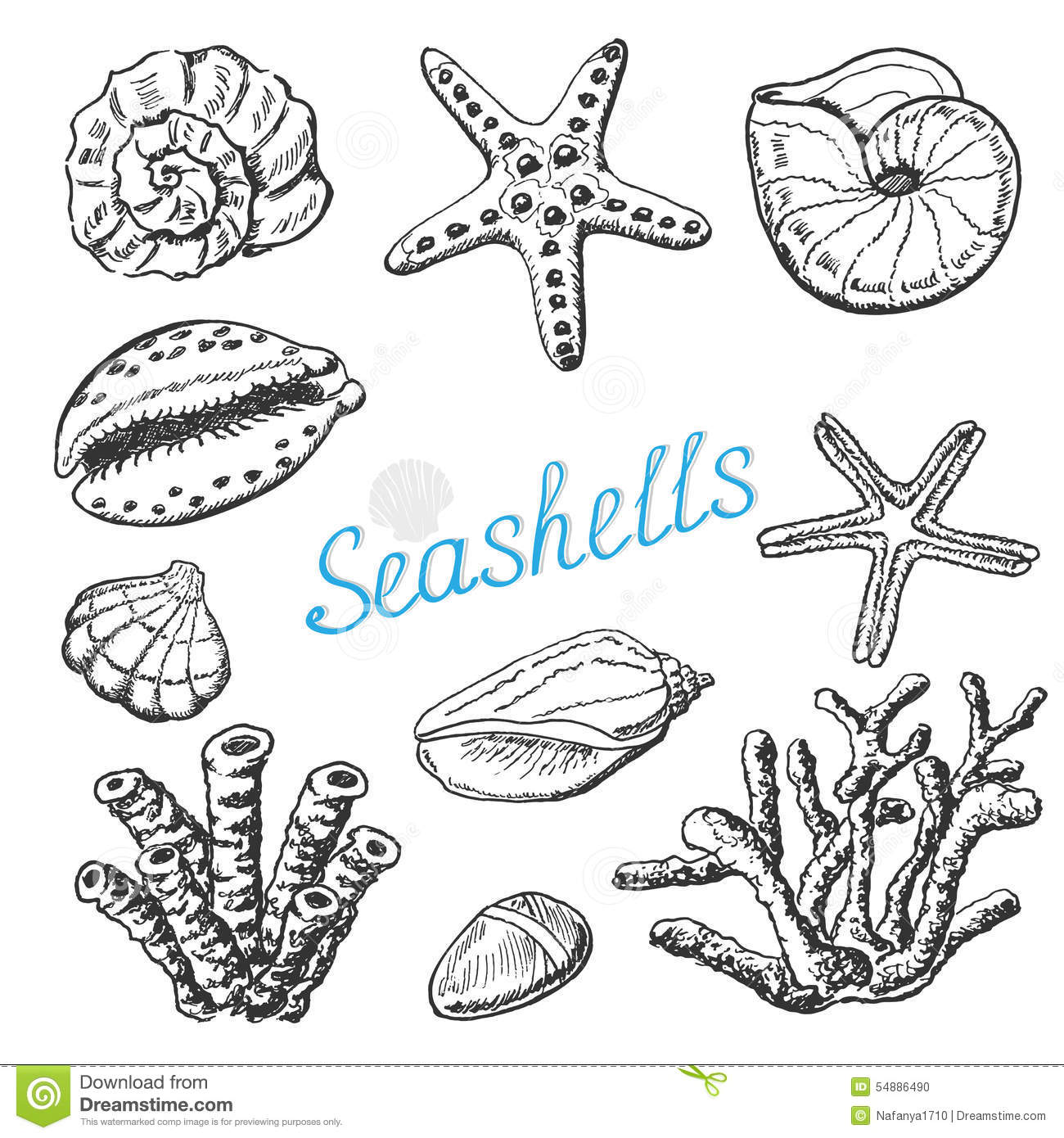 vector collection of isolated sea shells coral and starfish hand
