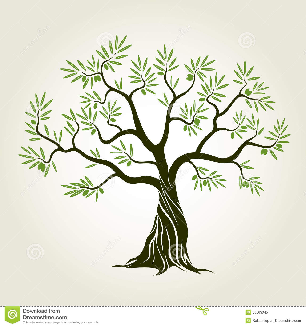Vector Color Olive Tree with green leafs.